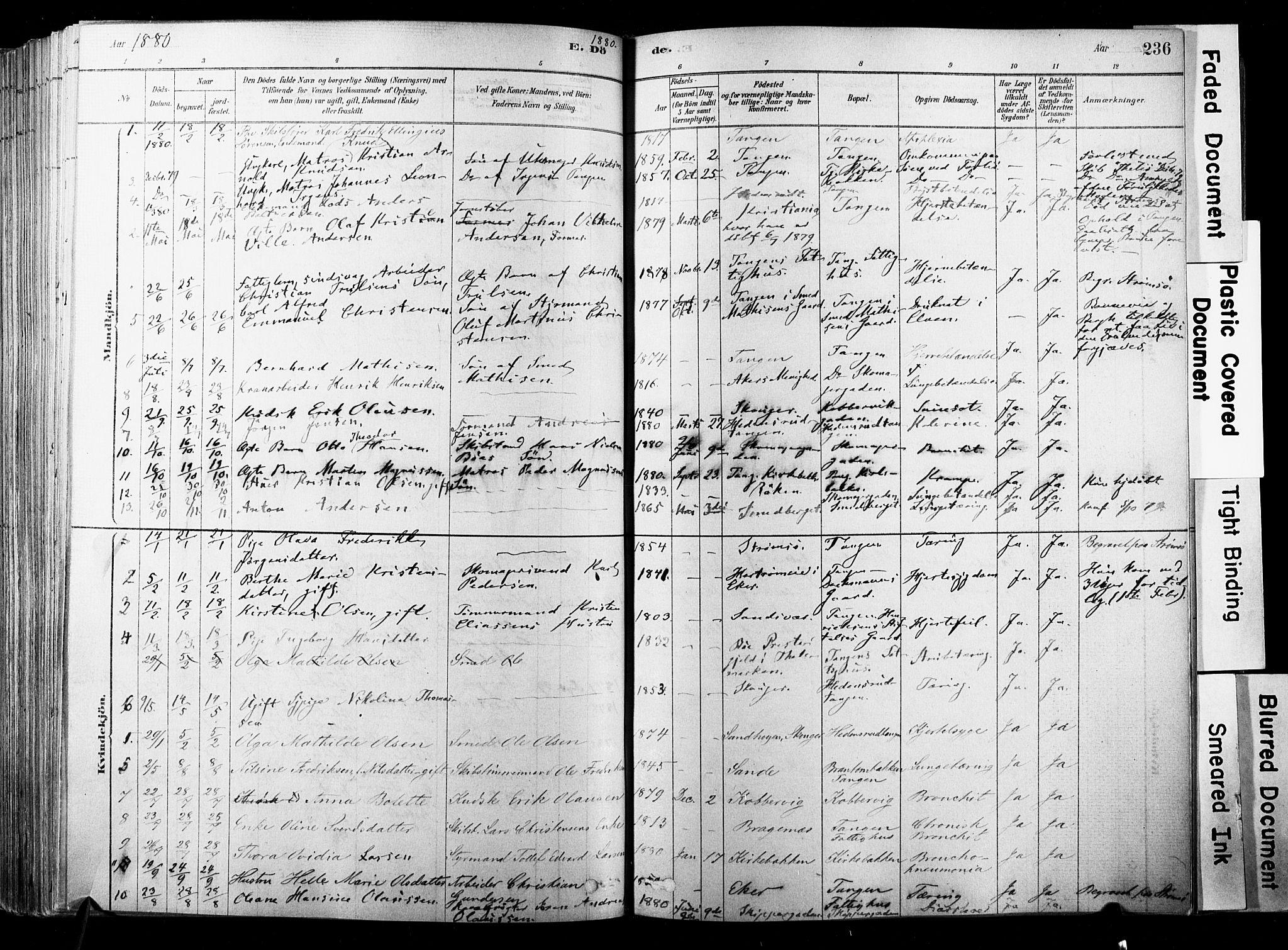 SAKO, Strømsø kirkebøker, F/Fb/L0006: Ministerialbok nr. II 6, 1879-1910, s. 236