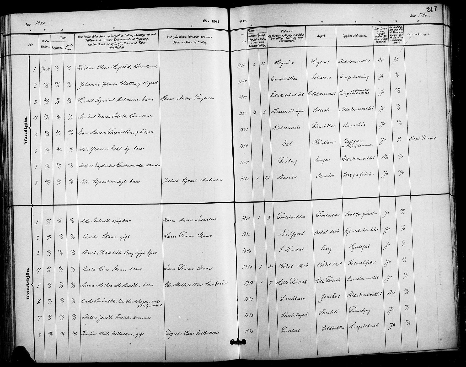 SAH, Vestre Gausdal prestekontor, Klokkerbok nr. 3, 1896-1925, s. 247
