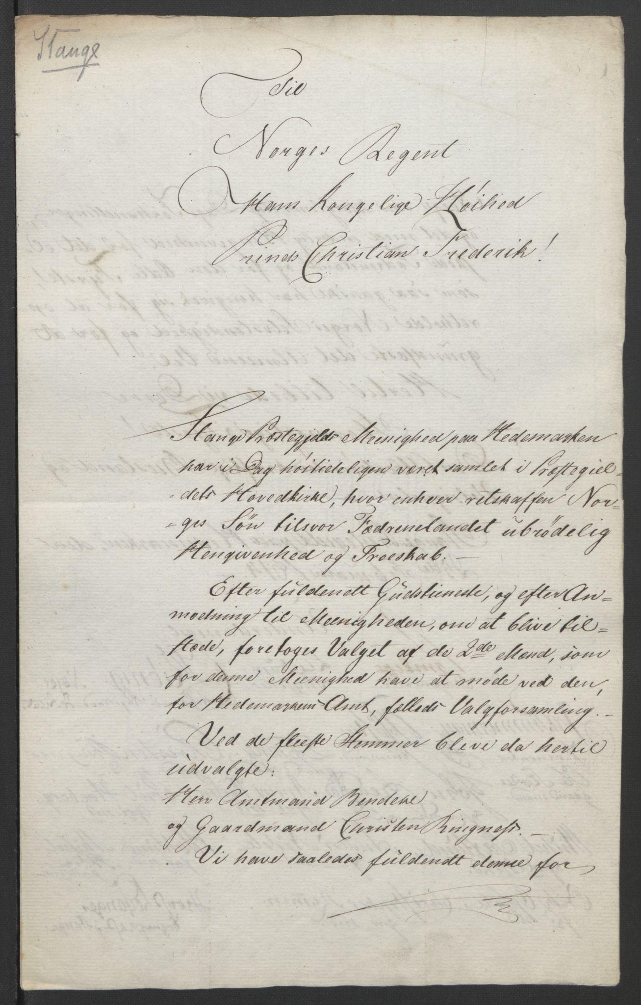 RA, Statsrådssekretariatet, D/Db/L0007: Fullmakter for Eidsvollsrepresentantene i 1814. , 1814, s. 238