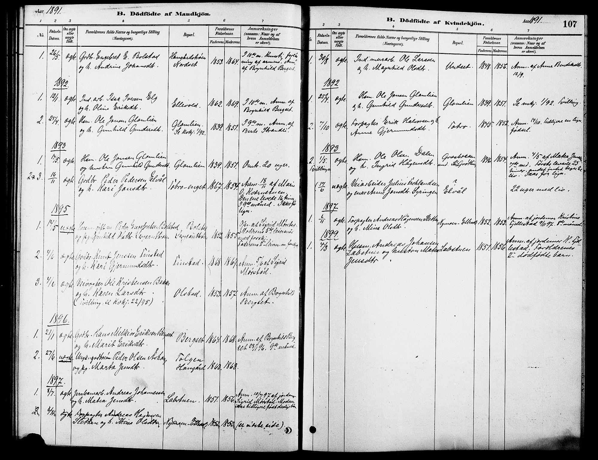 SAH, Rendalen prestekontor, H/Ha/Hab/L0003: Klokkerbok nr. 3, 1879-1904, s. 107
