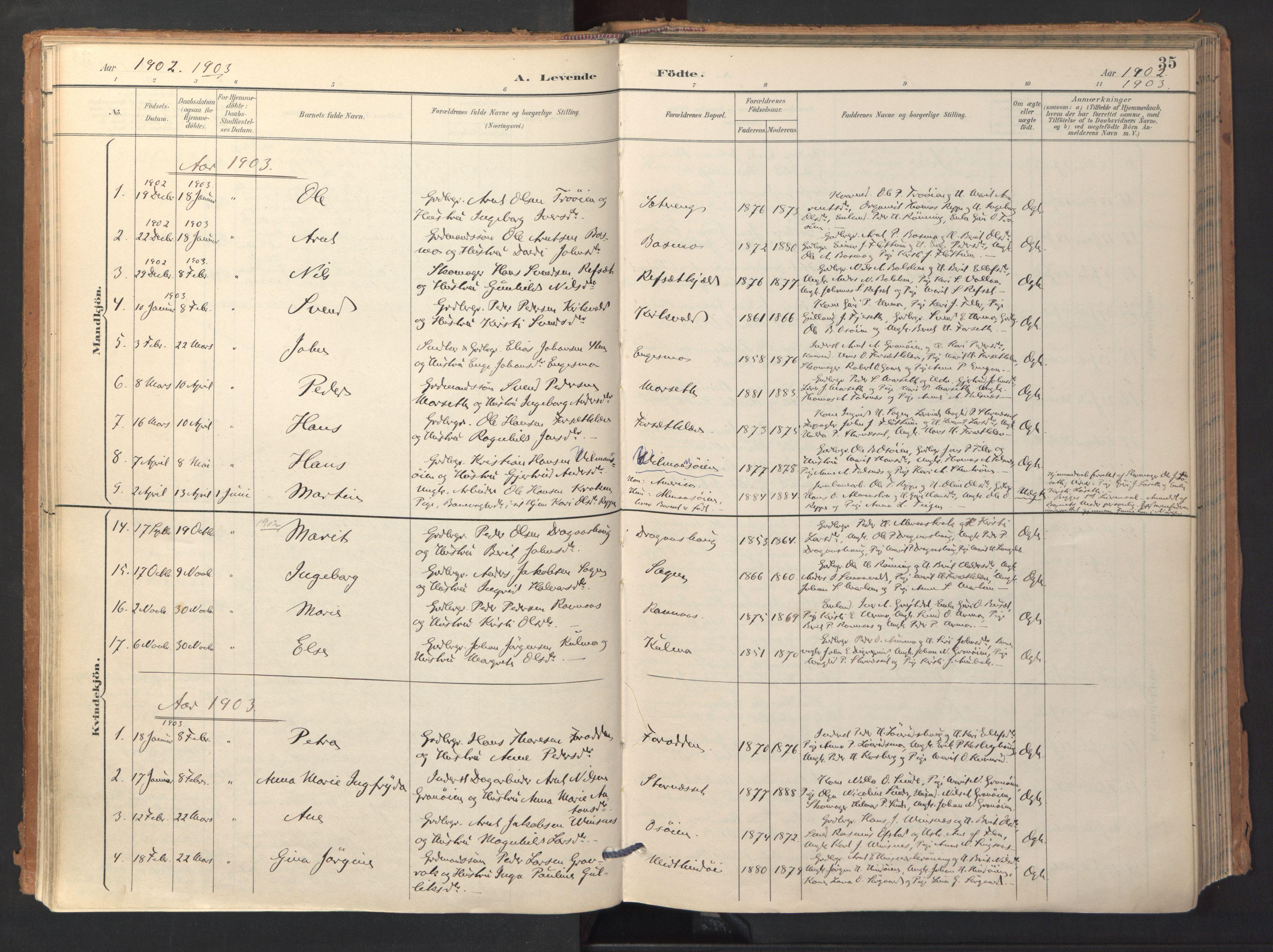 SAT, Ministerialprotokoller, klokkerbøker og fødselsregistre - Sør-Trøndelag, 688/L1025: Ministerialbok nr. 688A02, 1891-1909, s. 35