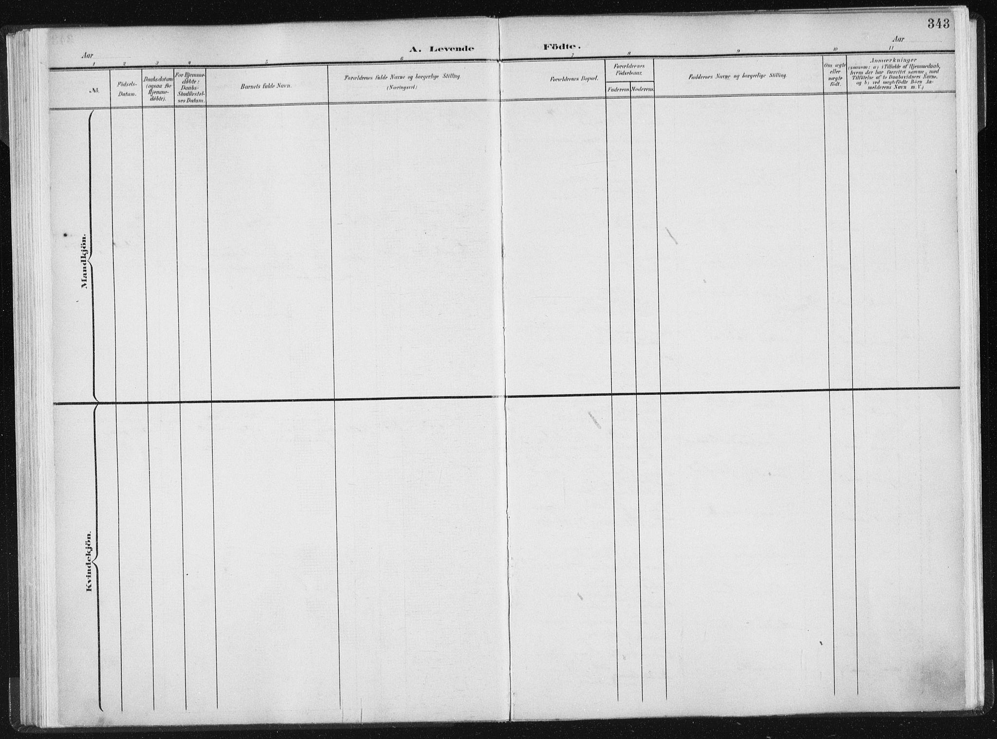 SAT, Ministerialprotokoller, klokkerbøker og fødselsregistre - Sør-Trøndelag, 604/L0200: Ministerialbok nr. 604A20II, 1901-1908, s. 343