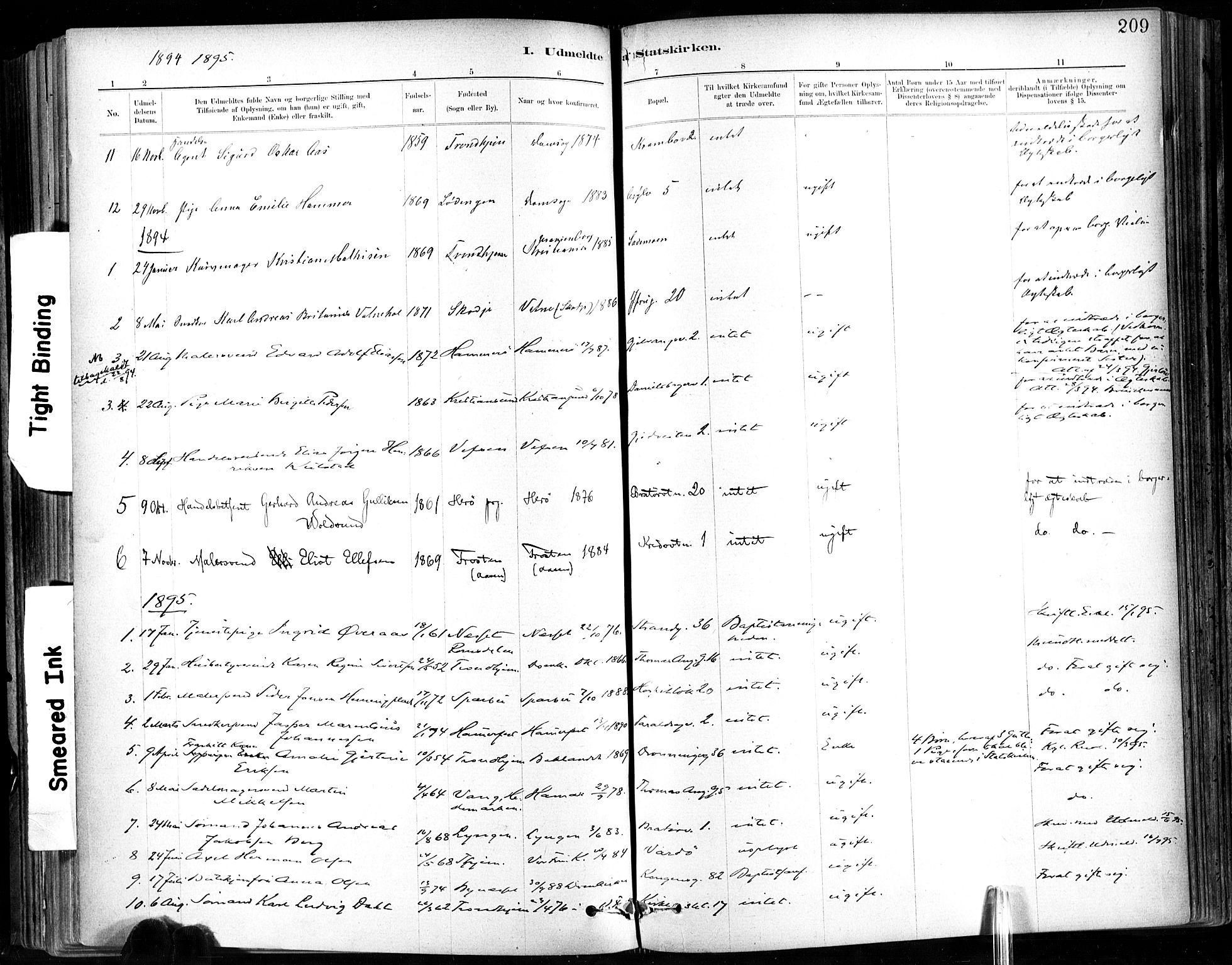 SAT, Ministerialprotokoller, klokkerbøker og fødselsregistre - Sør-Trøndelag, 602/L0120: Ministerialbok nr. 602A18, 1880-1913, s. 209