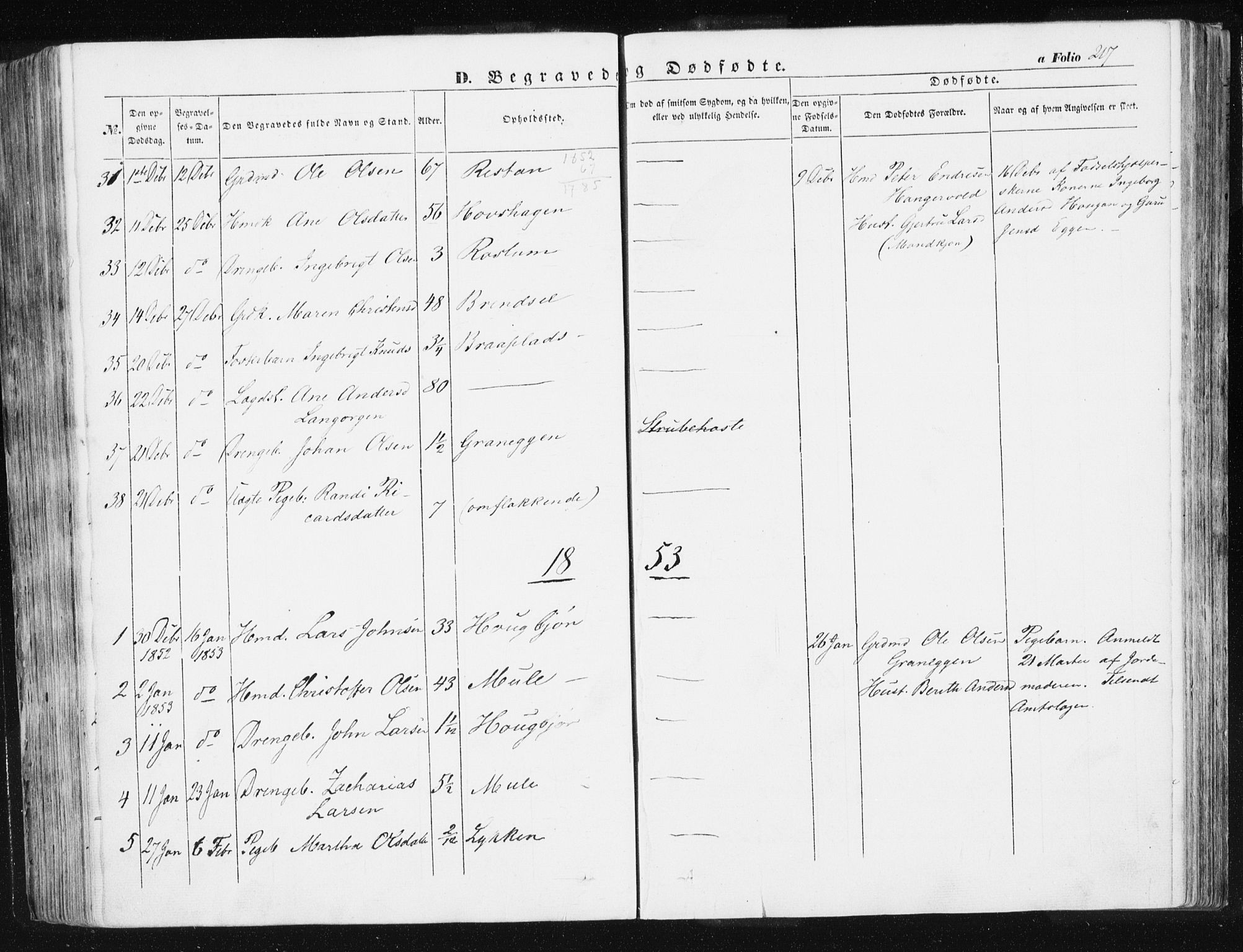 SAT, Ministerialprotokoller, klokkerbøker og fødselsregistre - Sør-Trøndelag, 612/L0376: Ministerialbok nr. 612A08, 1846-1859, s. 217