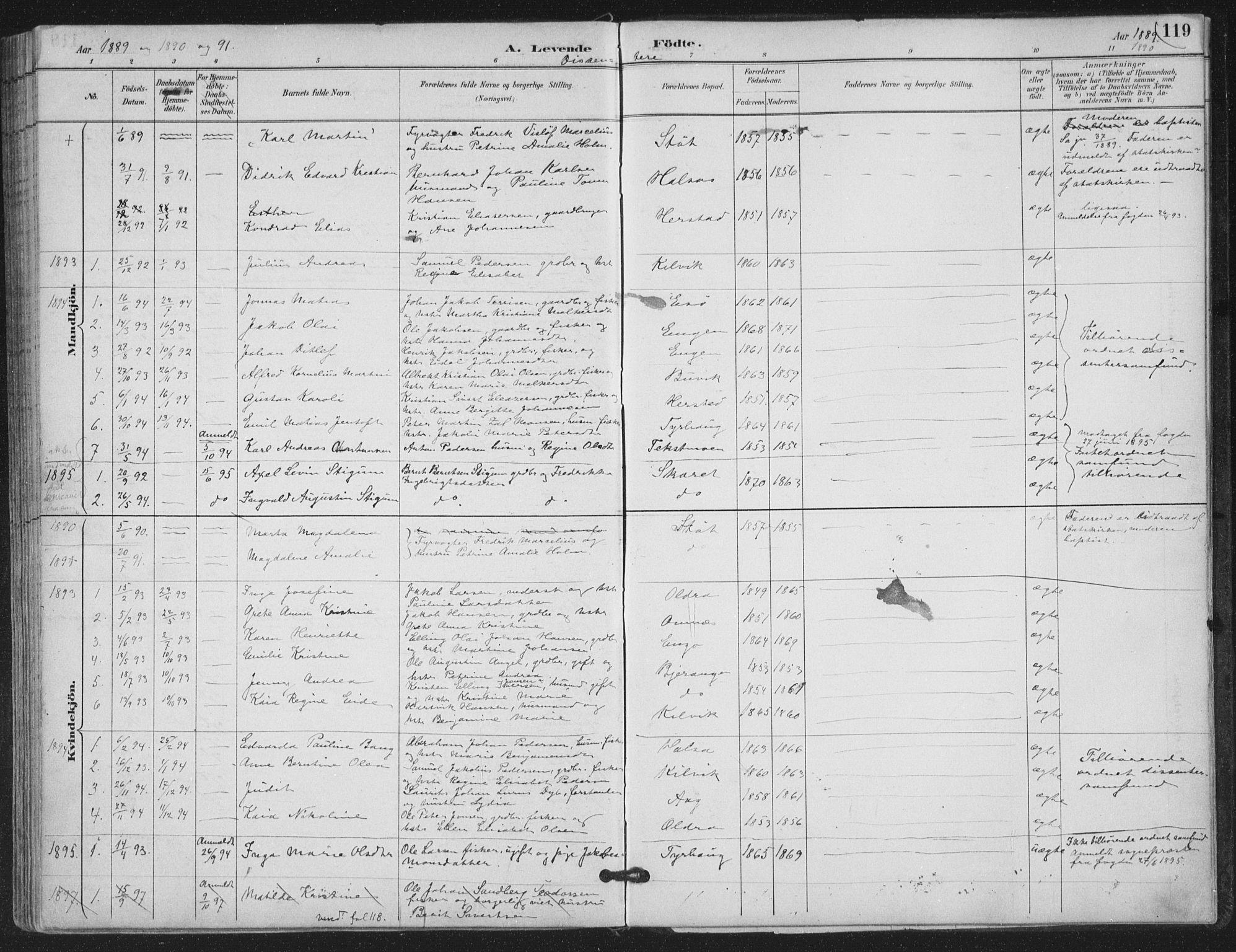 SAT, Ministerialprotokoller, klokkerbøker og fødselsregistre - Nordland, 843/L0628: Ministerialbok nr. 843A03, 1889-1907, s. 119
