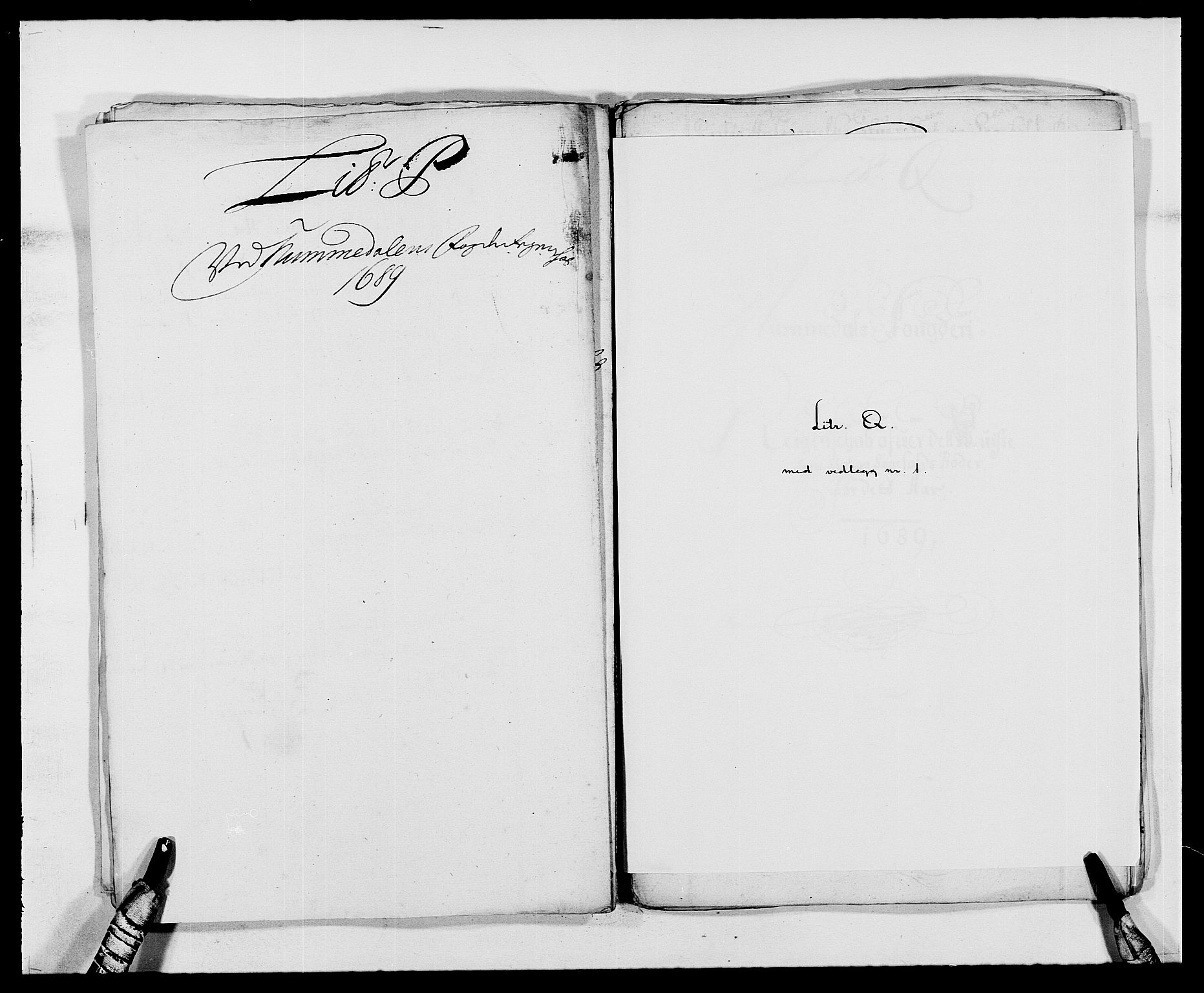 RA, Rentekammeret inntil 1814, Reviderte regnskaper, Fogderegnskap, R64/L4422: Fogderegnskap Namdal, 1687-1689, s. 280