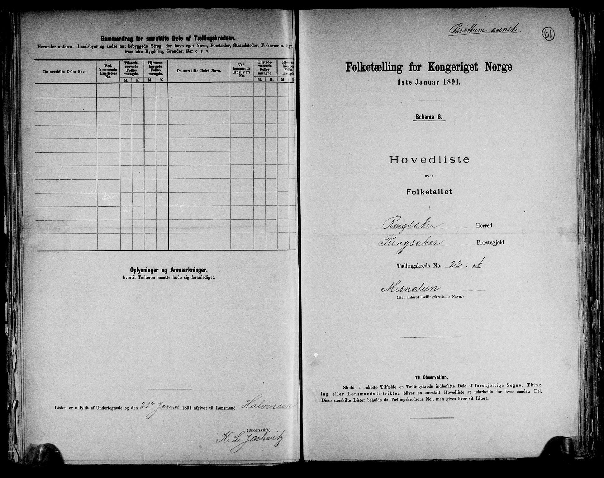RA, Folketelling 1891 for 0412 Ringsaker herred, 1891, s. 61