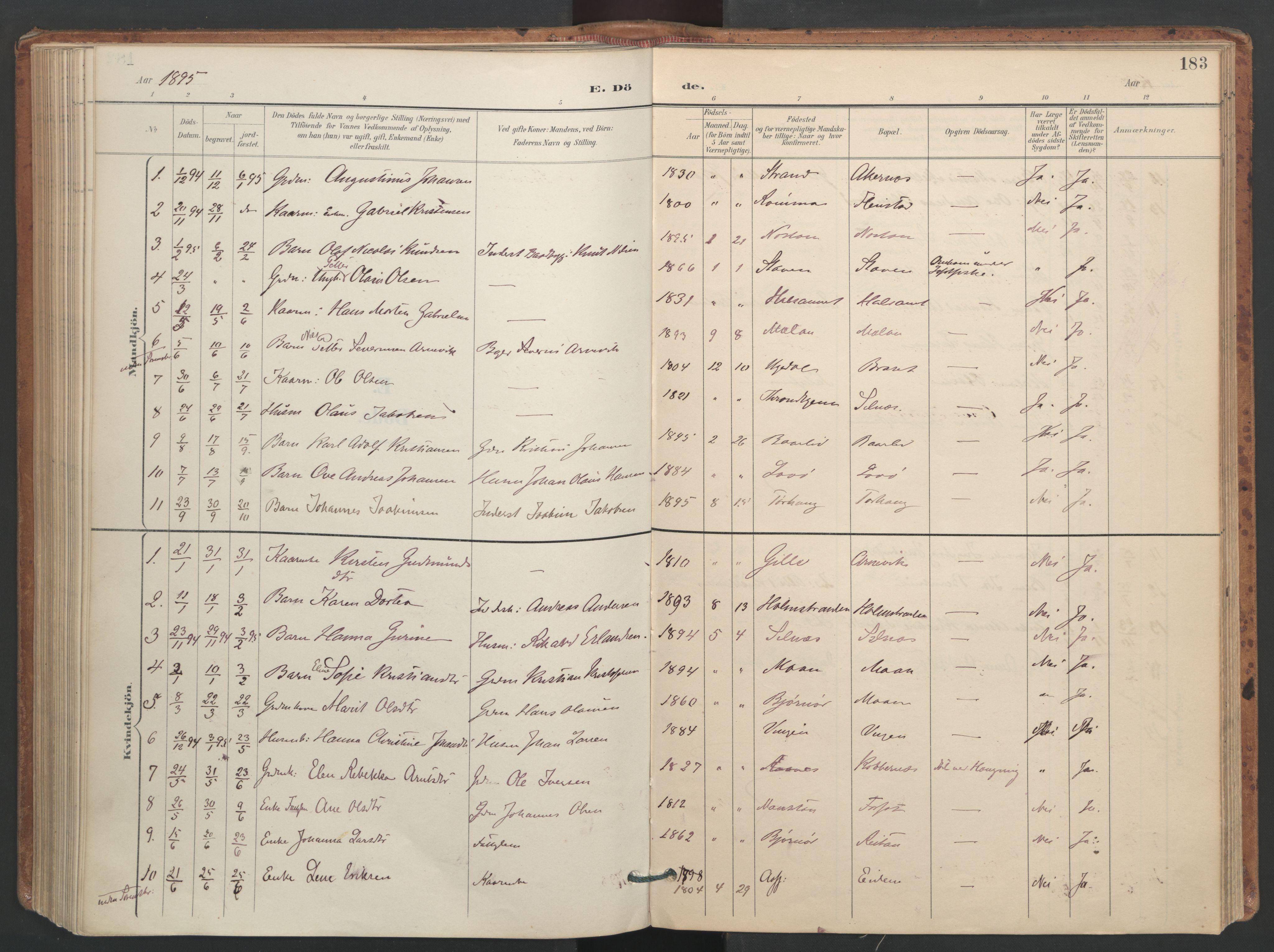 SAT, Ministerialprotokoller, klokkerbøker og fødselsregistre - Sør-Trøndelag, 655/L0681: Ministerialbok nr. 655A10, 1895-1907, s. 183