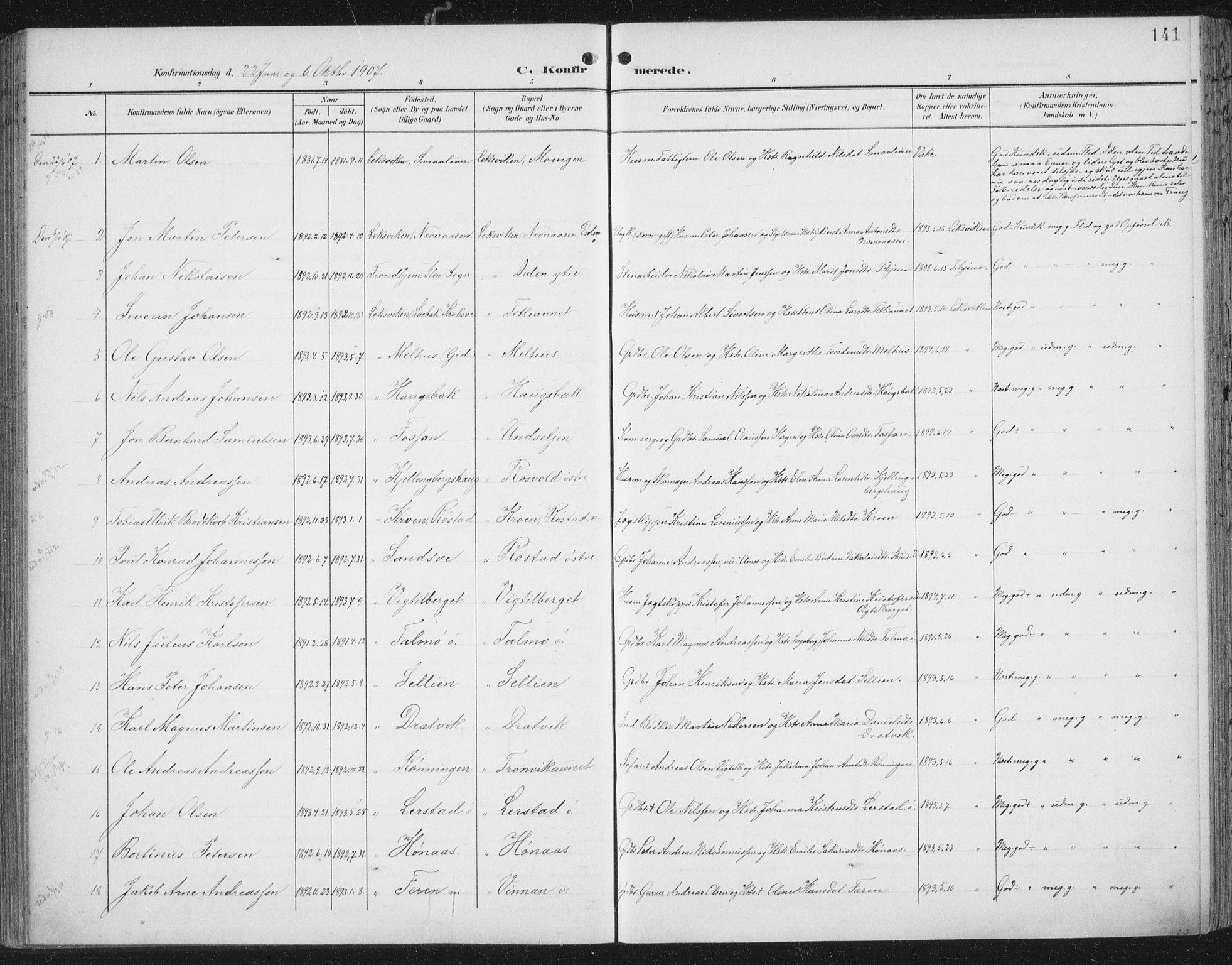 SAT, Ministerialprotokoller, klokkerbøker og fødselsregistre - Nord-Trøndelag, 701/L0011: Ministerialbok nr. 701A11, 1899-1915, s. 141