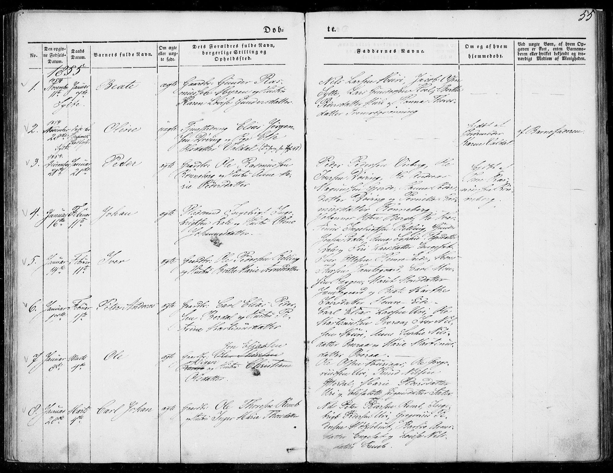 SAT, Ministerialprotokoller, klokkerbøker og fødselsregistre - Møre og Romsdal, 519/L0249: Ministerialbok nr. 519A08, 1846-1868, s. 55