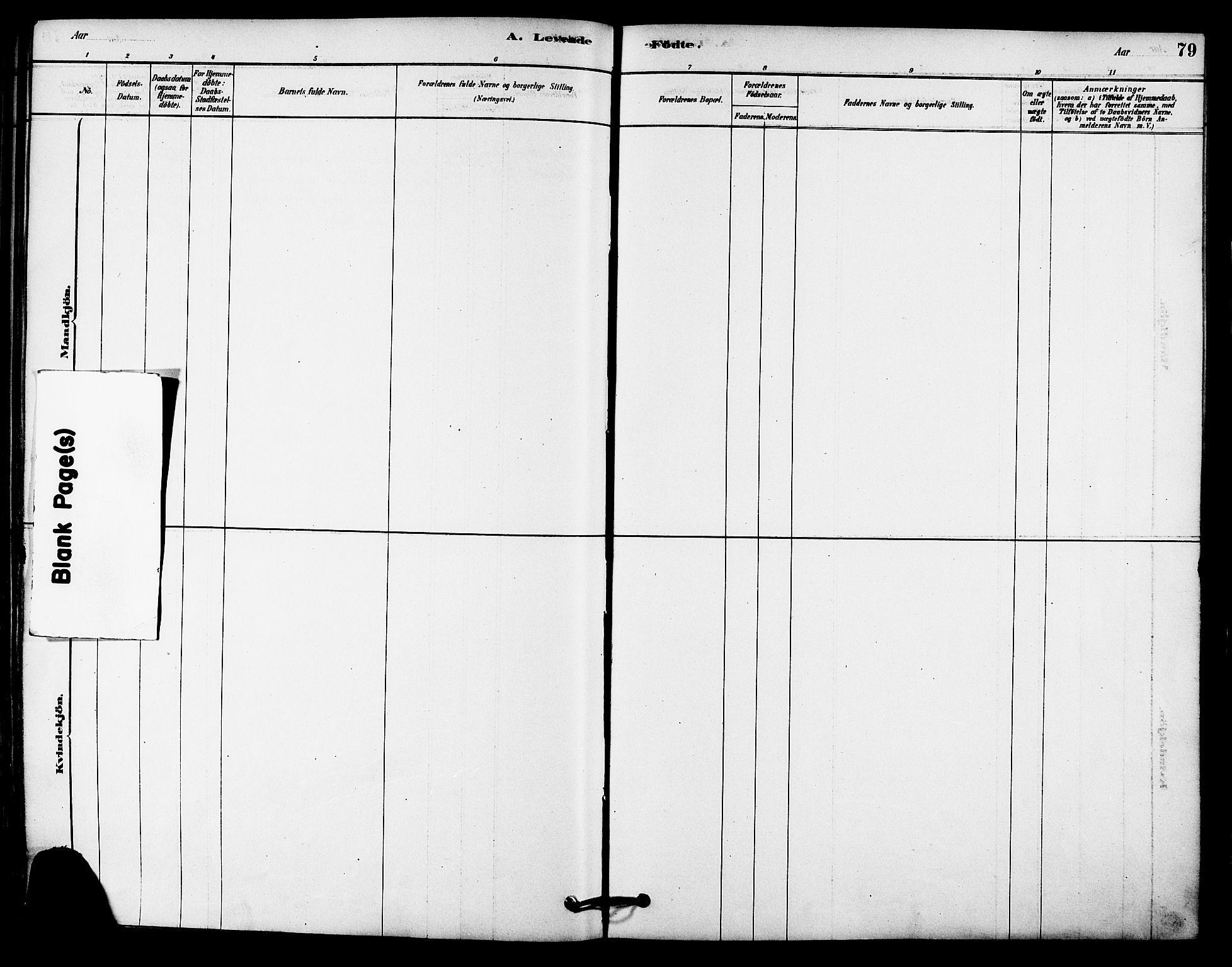 SAT, Ministerialprotokoller, klokkerbøker og fødselsregistre - Sør-Trøndelag, 612/L0378: Ministerialbok nr. 612A10, 1878-1897, s. 79