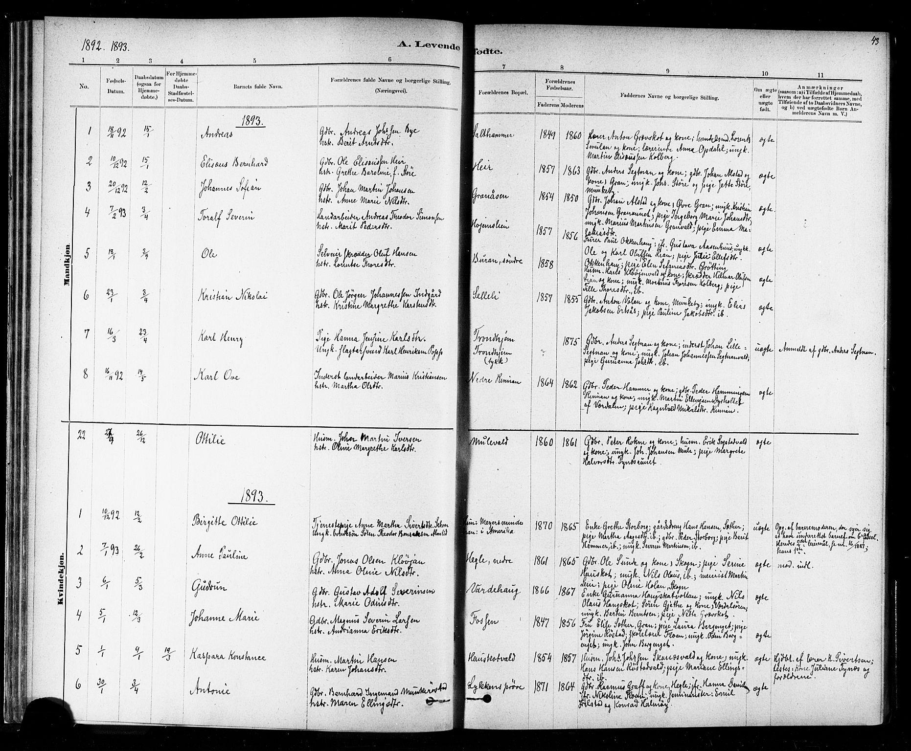 SAT, Ministerialprotokoller, klokkerbøker og fødselsregistre - Nord-Trøndelag, 721/L0208: Klokkerbok nr. 721C01, 1880-1917, s. 43