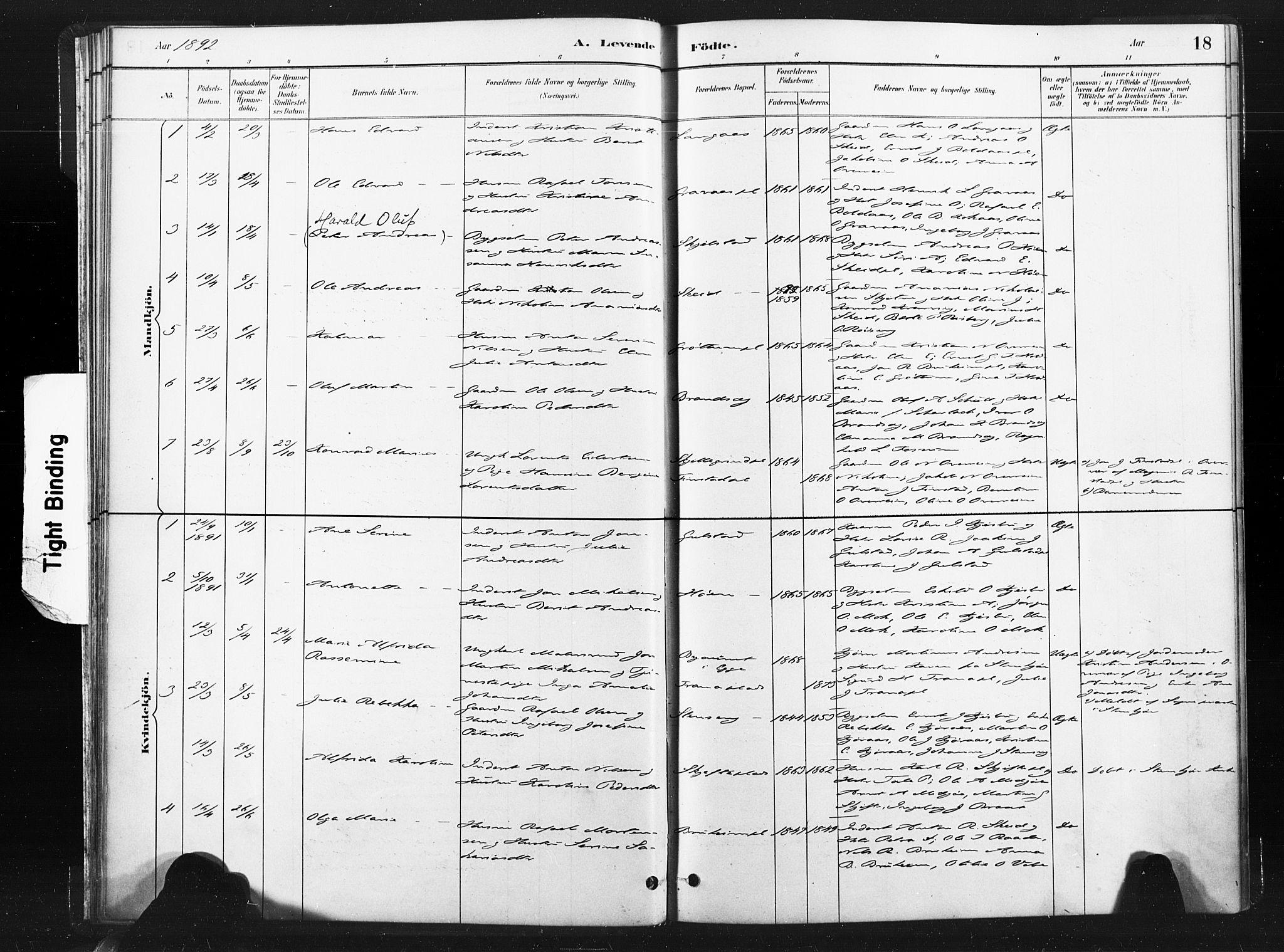 SAT, Ministerialprotokoller, klokkerbøker og fødselsregistre - Nord-Trøndelag, 736/L0361: Ministerialbok nr. 736A01, 1884-1906, s. 18