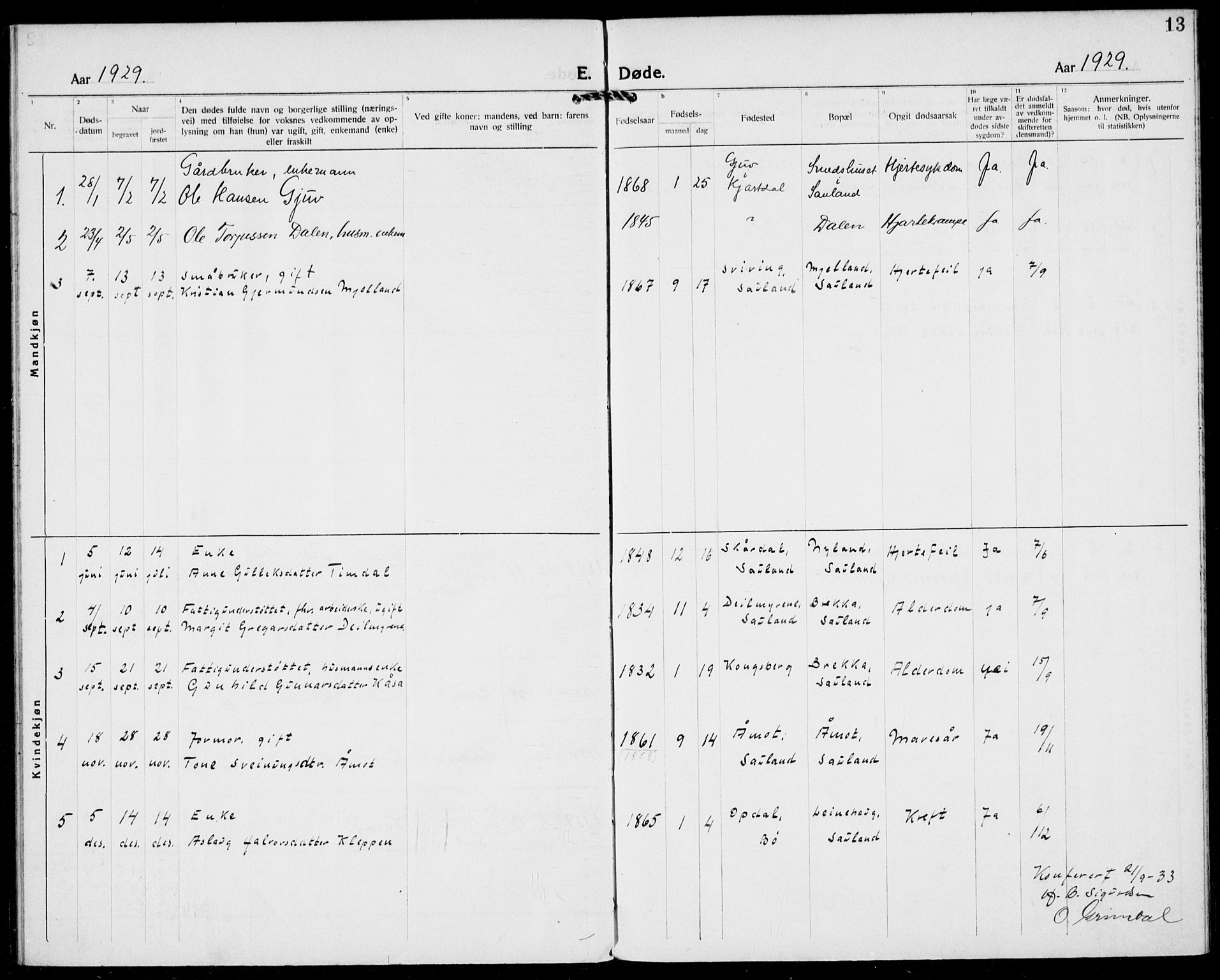 SAKO, Hjartdal kirkebøker, F/Fb/L0002: Ministerialbok nr. II 2, 1880-1932, s. 13