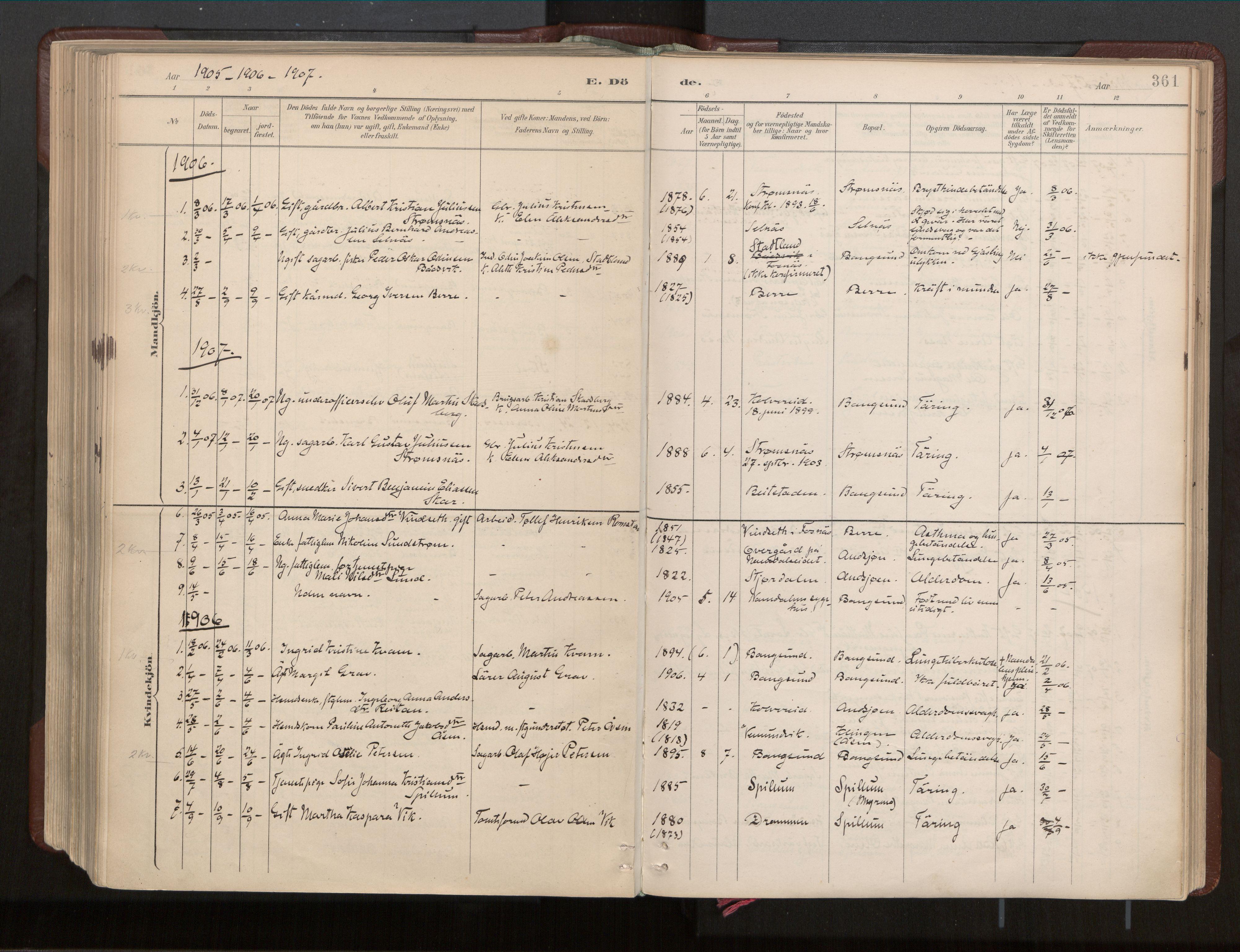 SAT, Ministerialprotokoller, klokkerbøker og fødselsregistre - Nord-Trøndelag, 770/L0589: Ministerialbok nr. 770A03, 1887-1929, s. 361