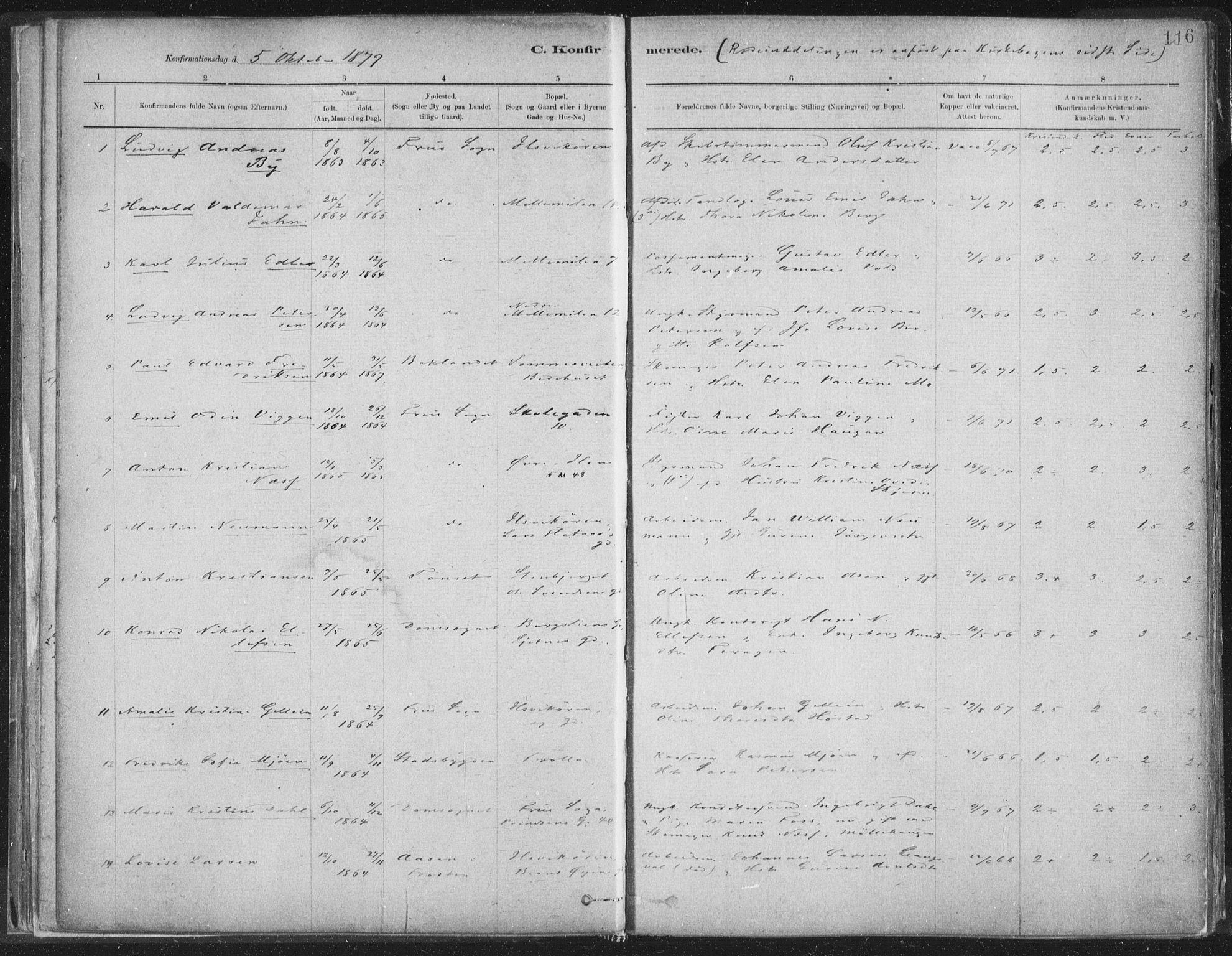 SAT, Ministerialprotokoller, klokkerbøker og fødselsregistre - Sør-Trøndelag, 603/L0162: Ministerialbok nr. 603A01, 1879-1895, s. 116