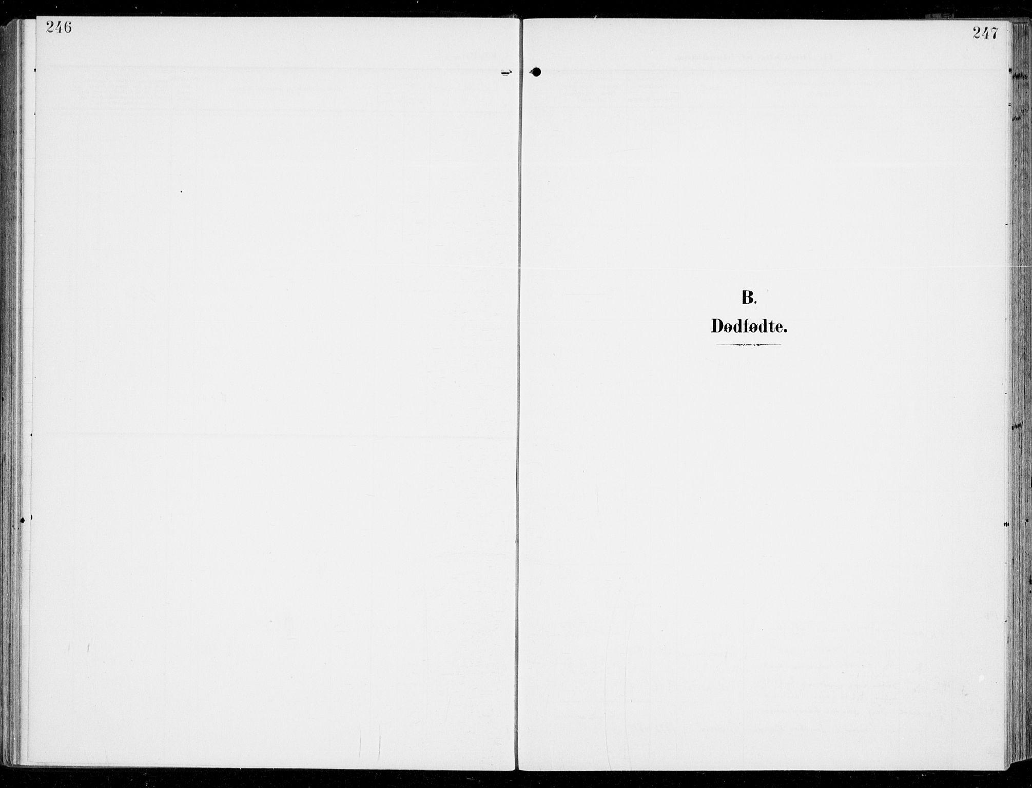SAKO, Sem kirkebøker, F/Fb/L0006: Ministerialbok nr. II 6, 1905-1918, s. 246-247