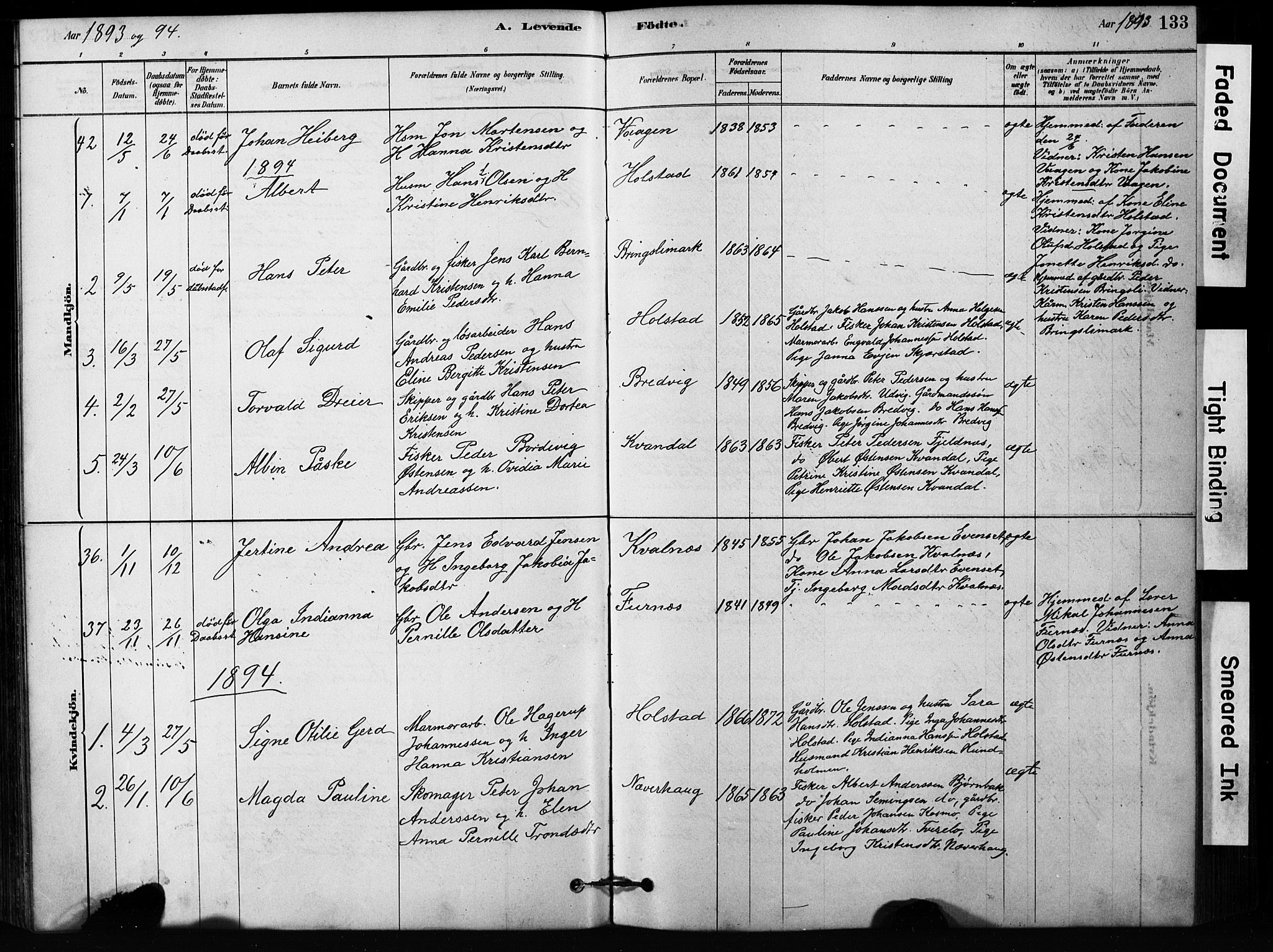 SAT, Ministerialprotokoller, klokkerbøker og fødselsregistre - Nordland, 852/L0754: Klokkerbok nr. 852C05, 1878-1894, s. 133