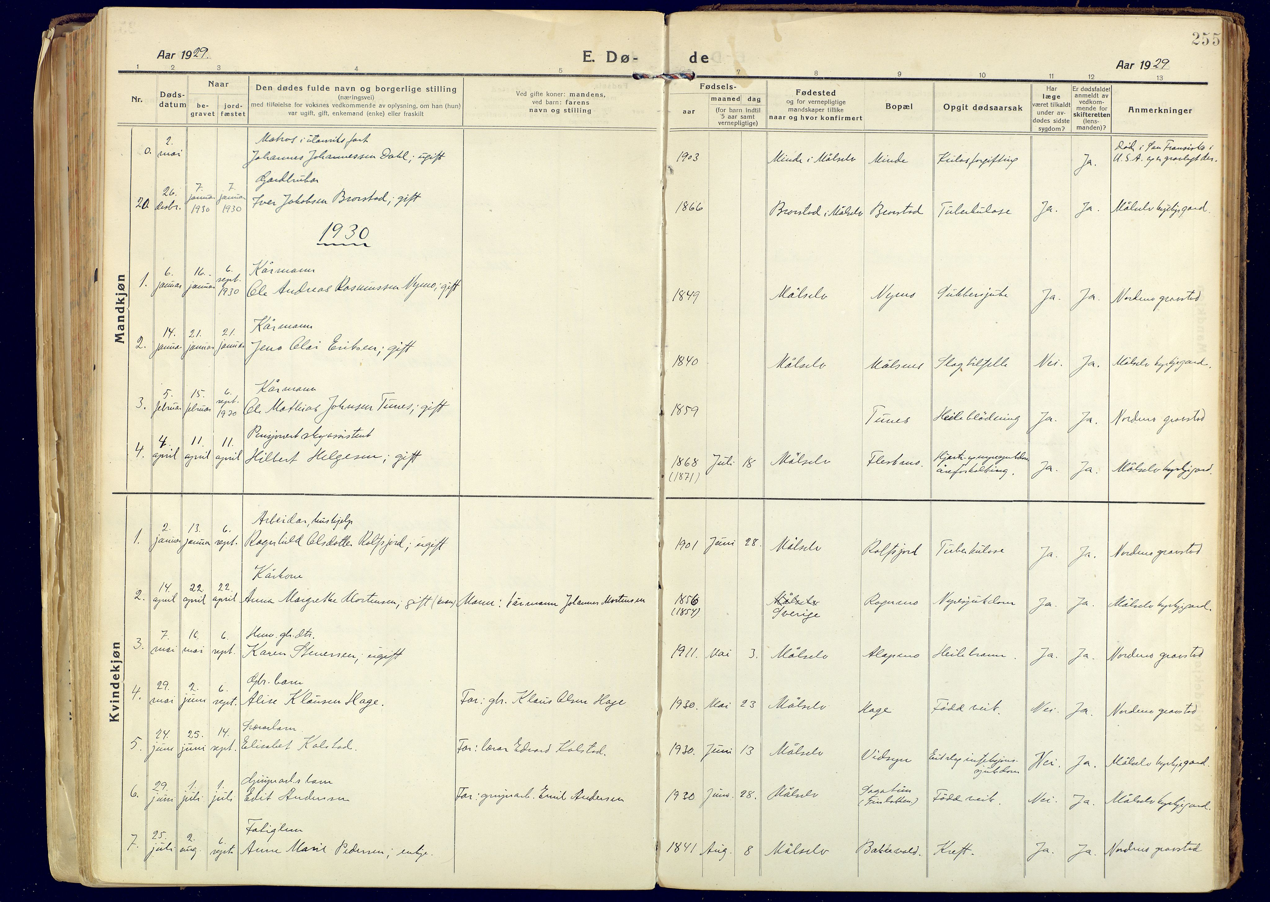 SATØ, Målselv sokneprestembete, Ministerialbok nr. 14, 1919-1932, s. 255