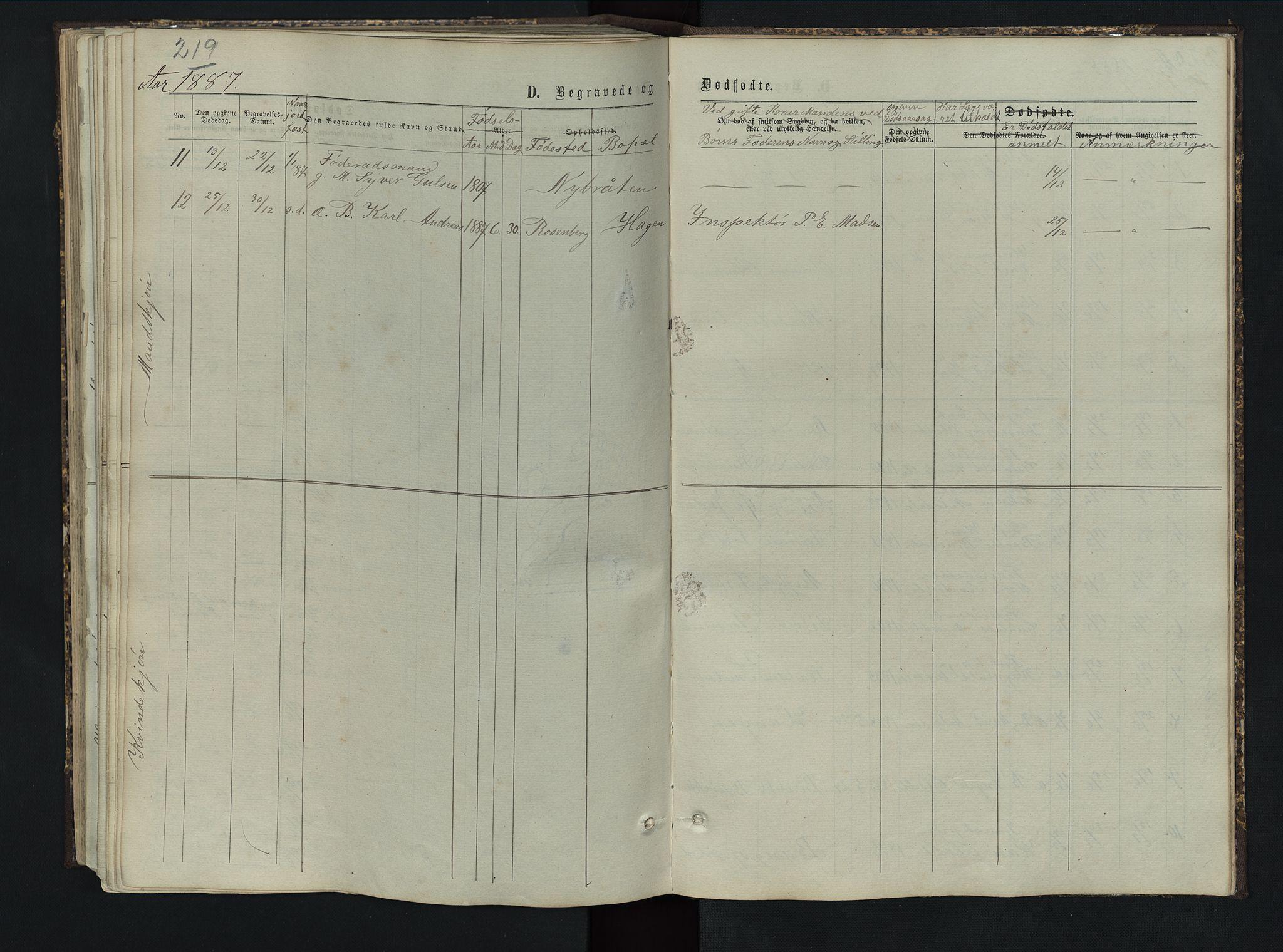 SAH, Sør-Aurdal prestekontor, Klokkerbok nr. 5, 1866-1893, s. 219