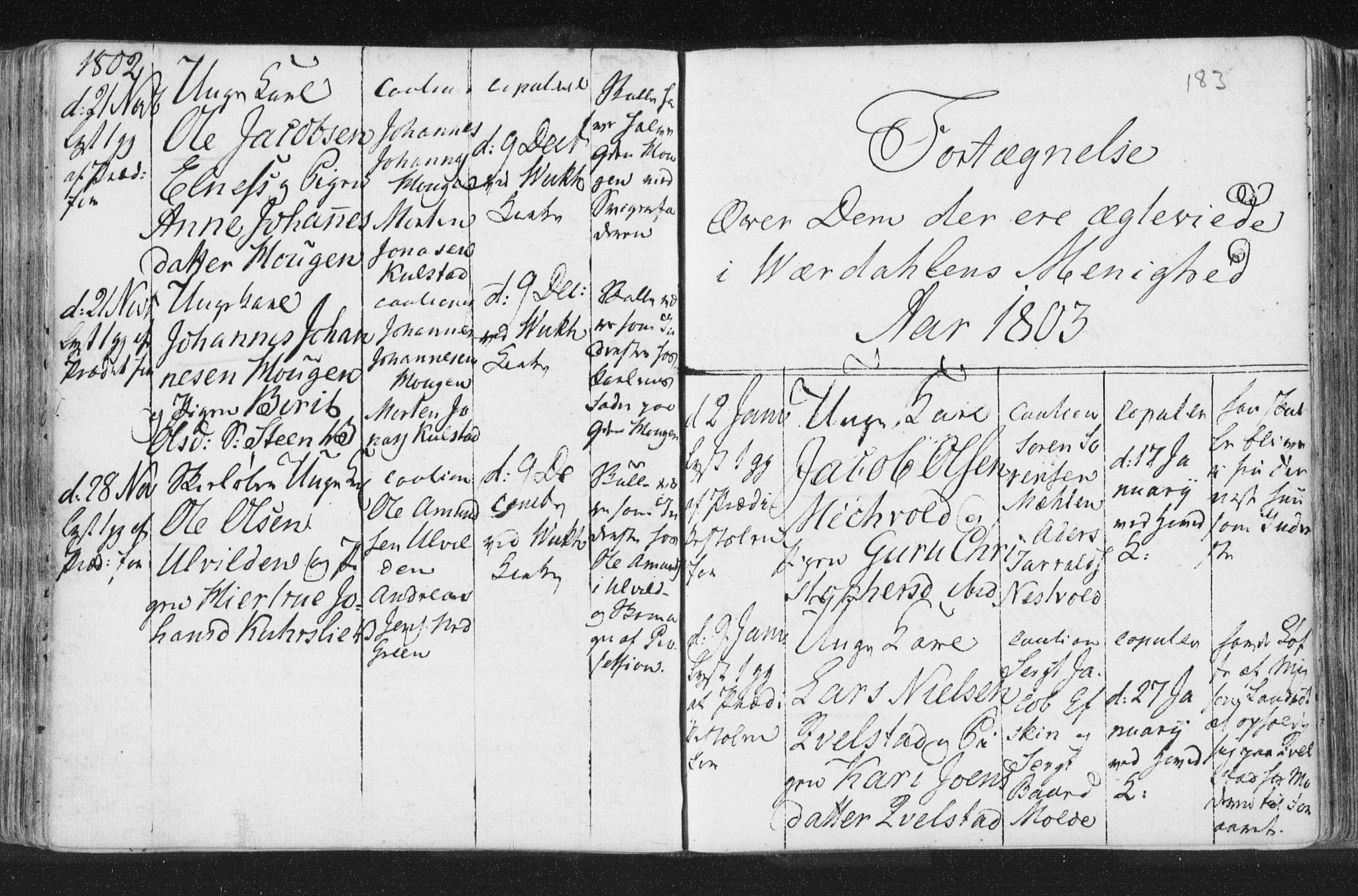 SAT, Ministerialprotokoller, klokkerbøker og fødselsregistre - Nord-Trøndelag, 723/L0232: Ministerialbok nr. 723A03, 1781-1804, s. 183