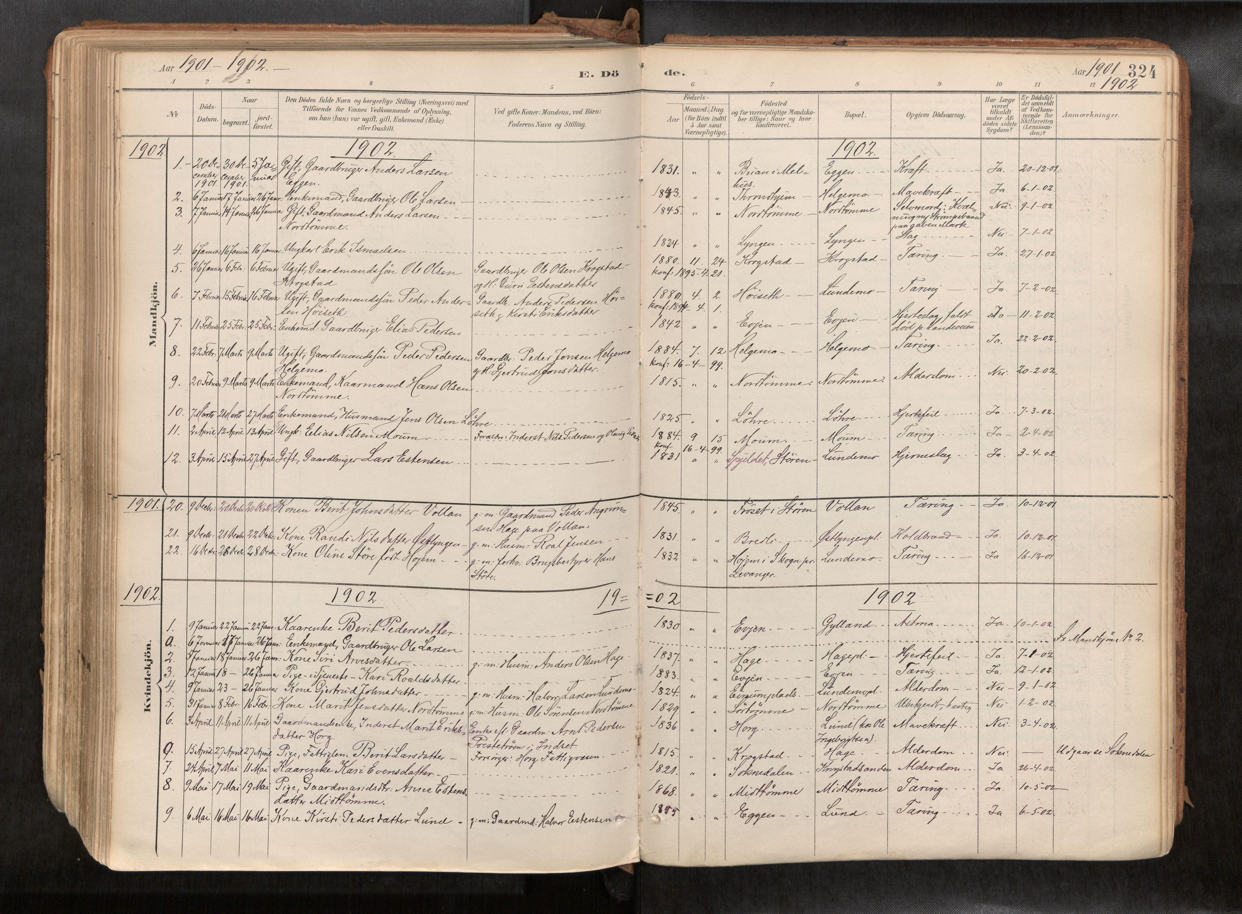 SAT, Ministerialprotokoller, klokkerbøker og fødselsregistre - Sør-Trøndelag, 692/L1105b: Ministerialbok nr. 692A06, 1891-1934, s. 324