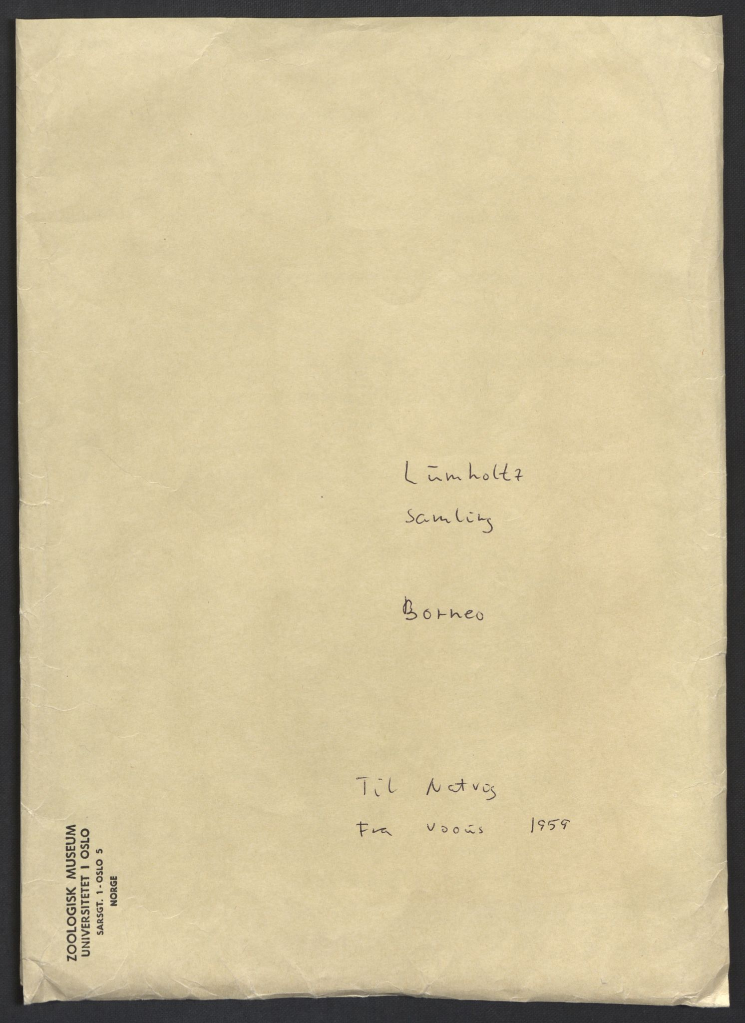 NHMO, Naturhistorisk museum (Oslo), 2: Fugl. Brev, Notater, Objektlister. Lumholtz samling, Borneo., 1951-1961