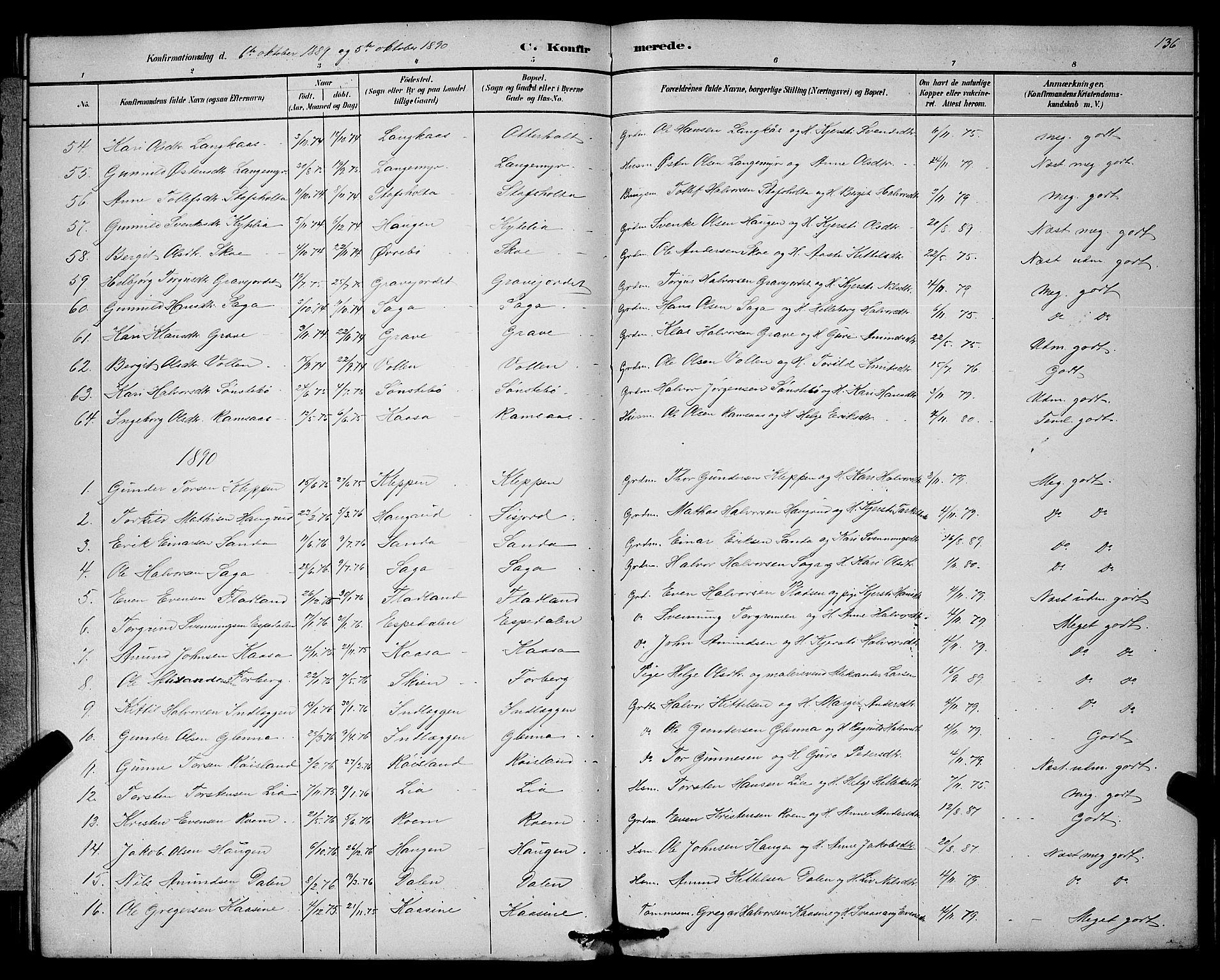 SAKO, Bø kirkebøker, G/Ga/L0005: Klokkerbok nr. 5, 1883-1897, s. 136