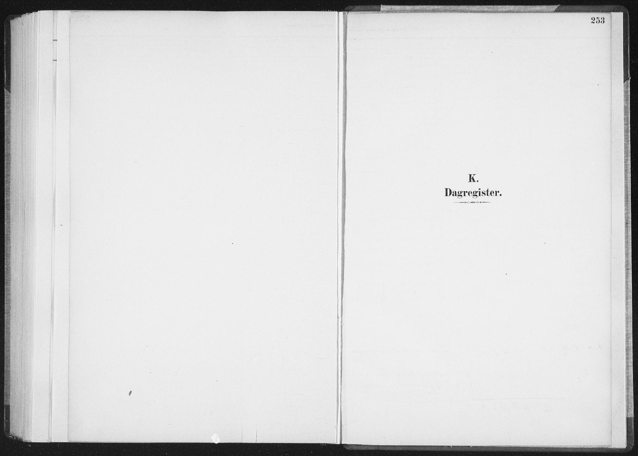 SAT, Ministerialprotokoller, klokkerbøker og fødselsregistre - Nordland, 898/L1422: Ministerialbok nr. 898A02, 1887-1908, s. 253