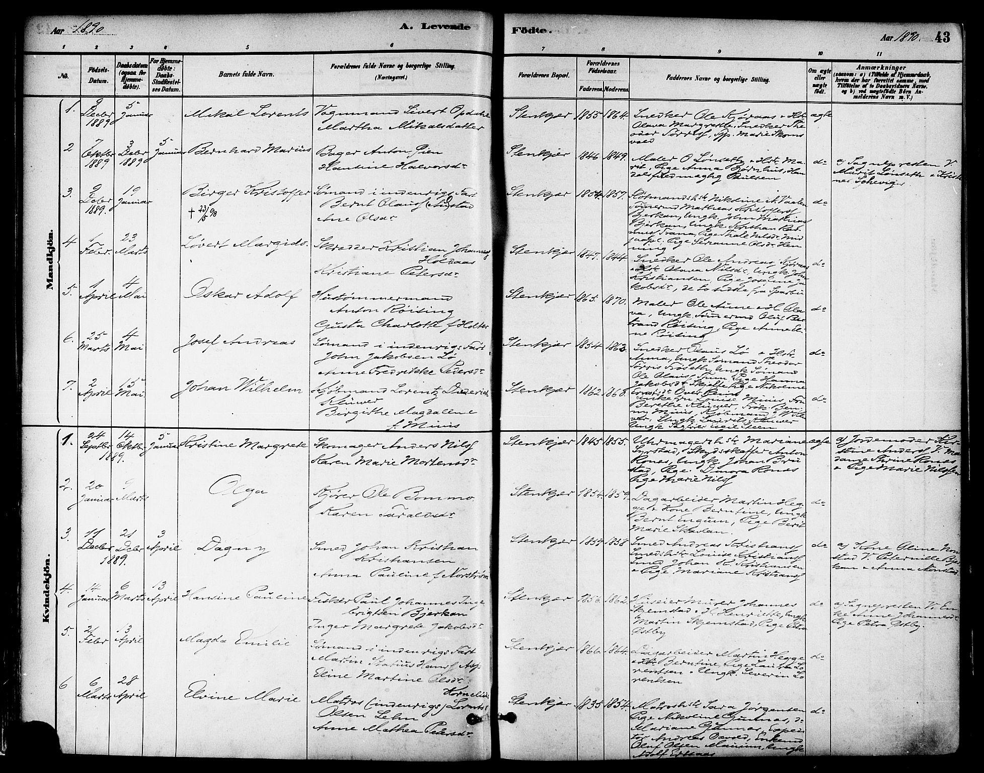 SAT, Ministerialprotokoller, klokkerbøker og fødselsregistre - Nord-Trøndelag, 739/L0371: Ministerialbok nr. 739A03, 1881-1895, s. 43