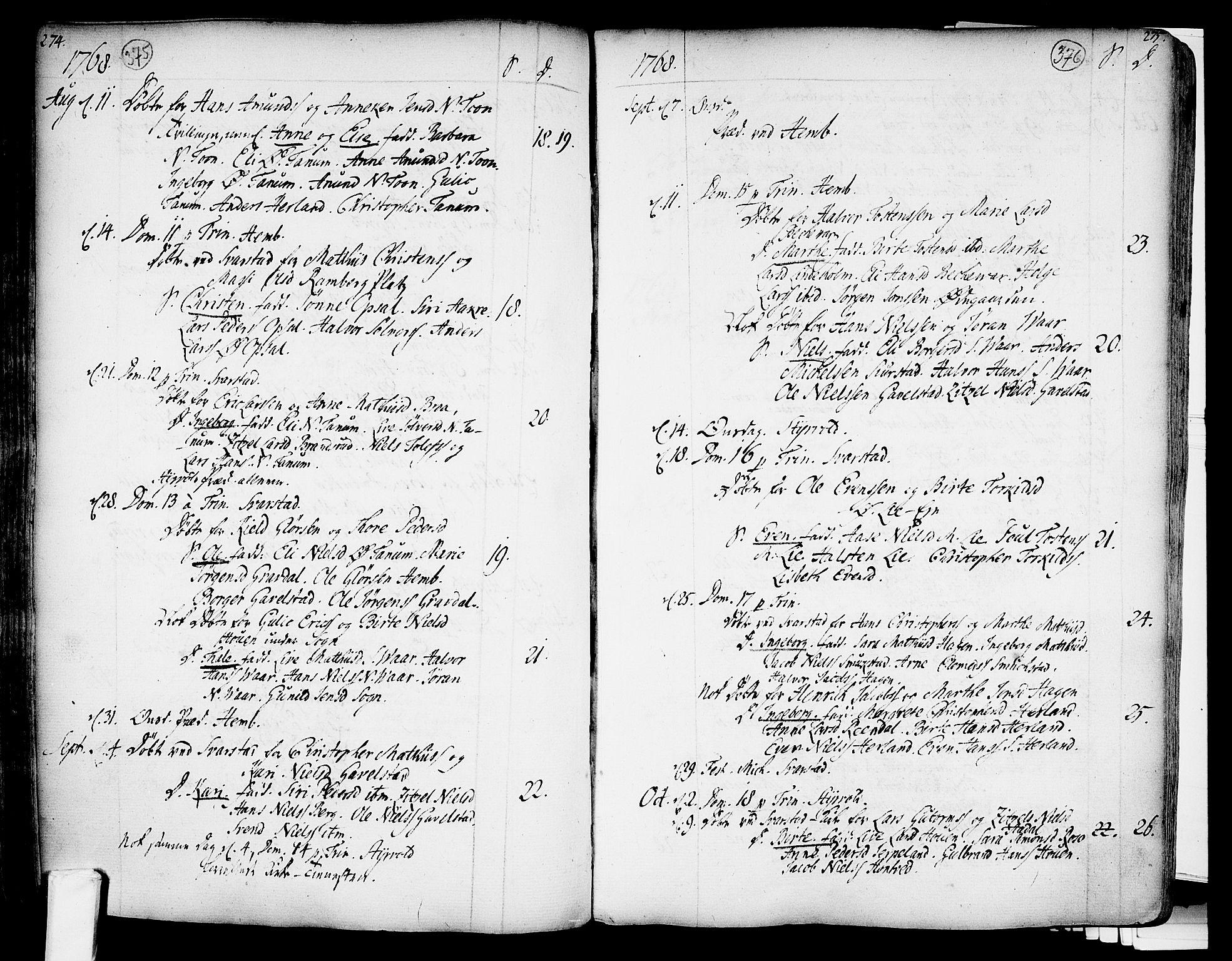 SAKO, Lardal kirkebøker, F/Fa/L0003: Ministerialbok nr. I 3, 1733-1815, s. 375-376