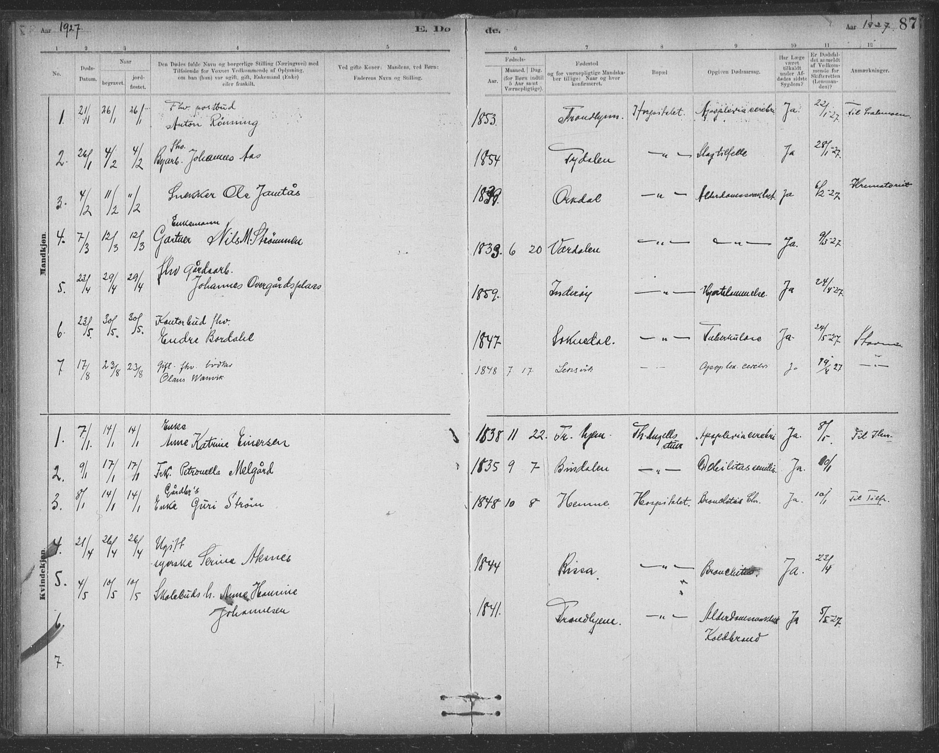 SAT, Ministerialprotokoller, klokkerbøker og fødselsregistre - Sør-Trøndelag, 623/L0470: Ministerialbok nr. 623A04, 1884-1938, s. 87