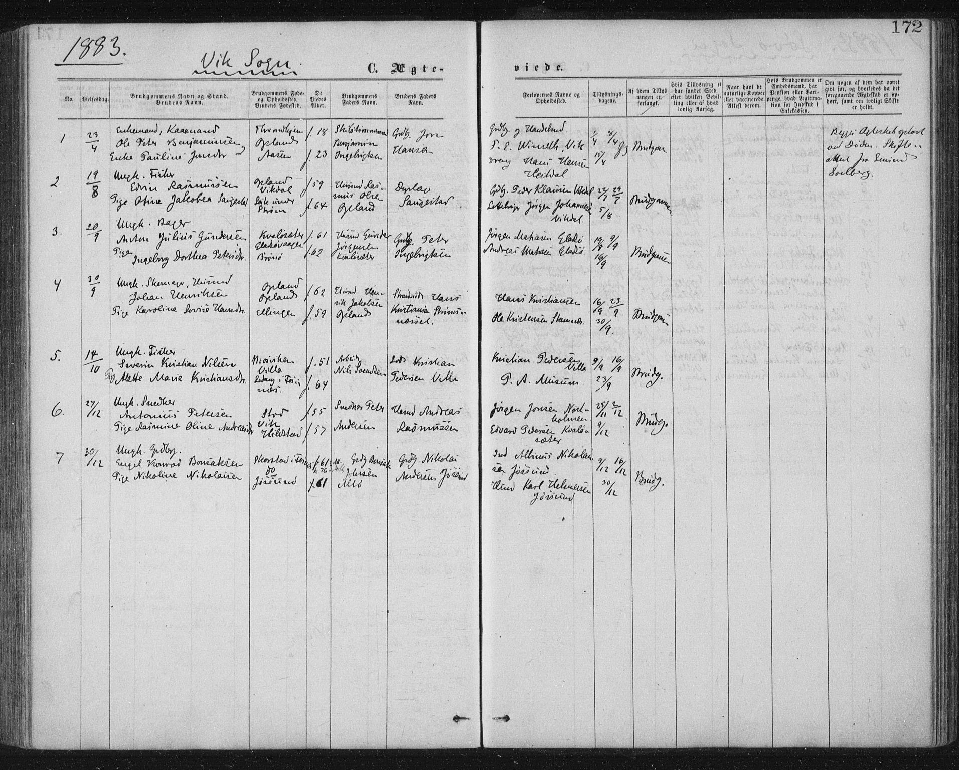 SAT, Ministerialprotokoller, klokkerbøker og fødselsregistre - Nord-Trøndelag, 771/L0596: Ministerialbok nr. 771A03, 1870-1884, s. 172