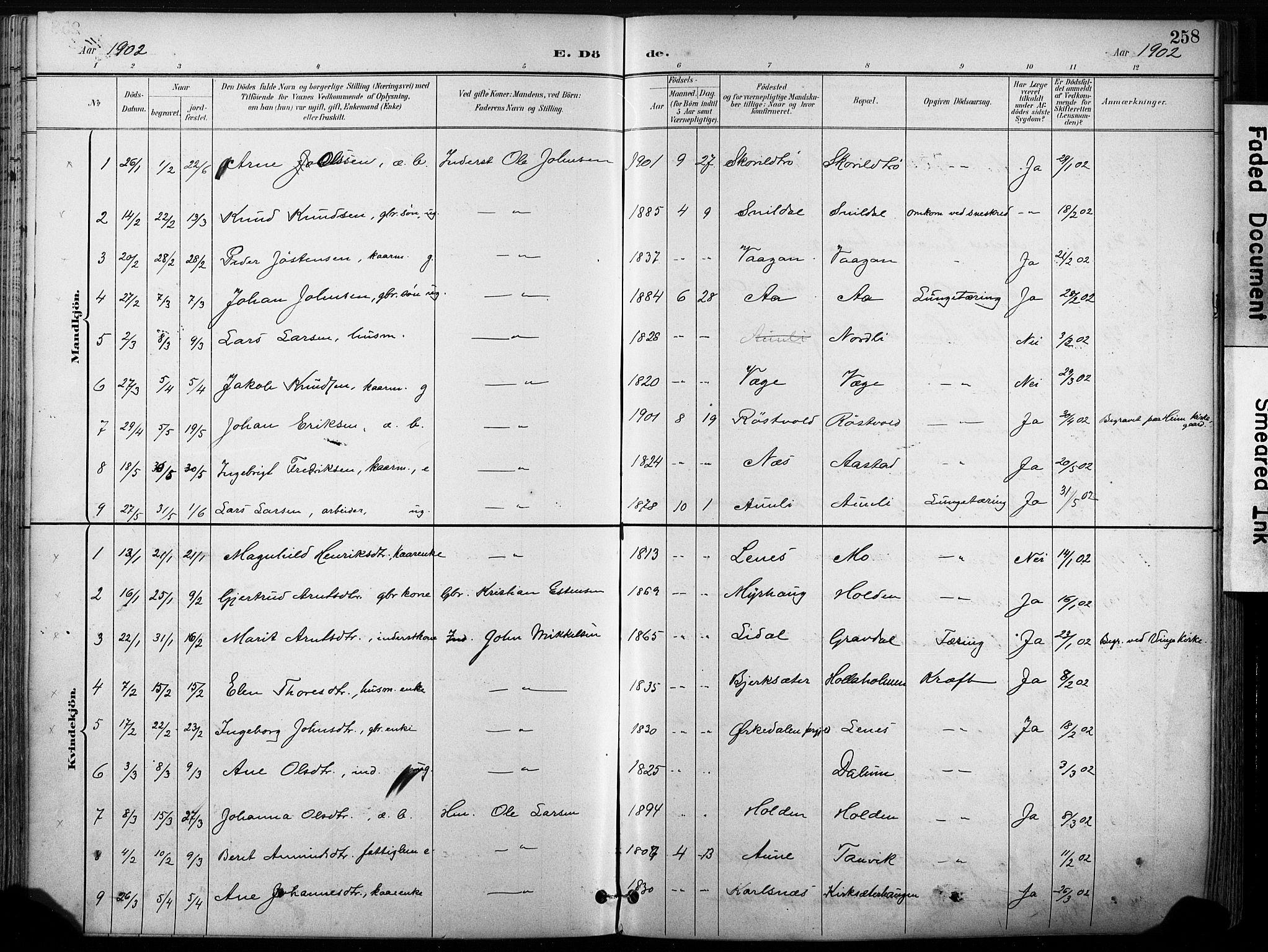 SAT, Ministerialprotokoller, klokkerbøker og fødselsregistre - Sør-Trøndelag, 630/L0497: Ministerialbok nr. 630A10, 1896-1910, s. 258