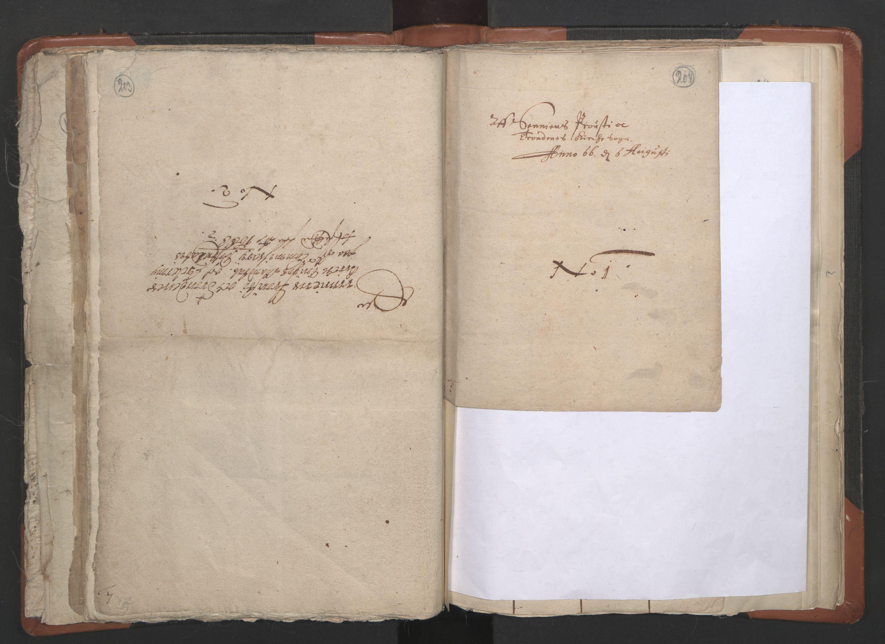 RA, Sogneprestenes manntall 1664-1666, nr. 36: Lofoten og Vesterålen prosti, Senja prosti og Troms prosti, 1664-1666, s. 203-204