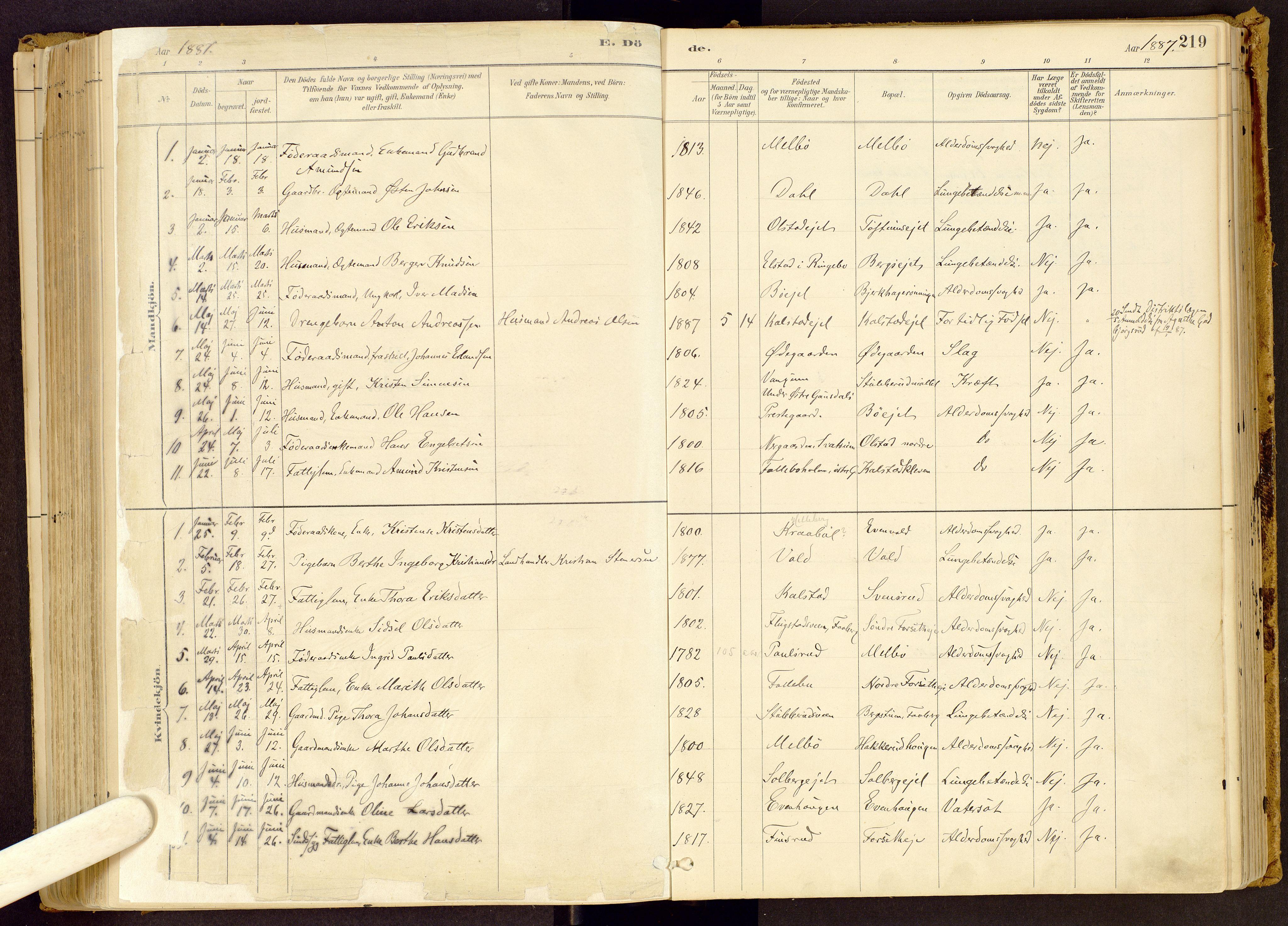 SAH, Vestre Gausdal prestekontor, Ministerialbok nr. 1, 1887-1914, s. 219