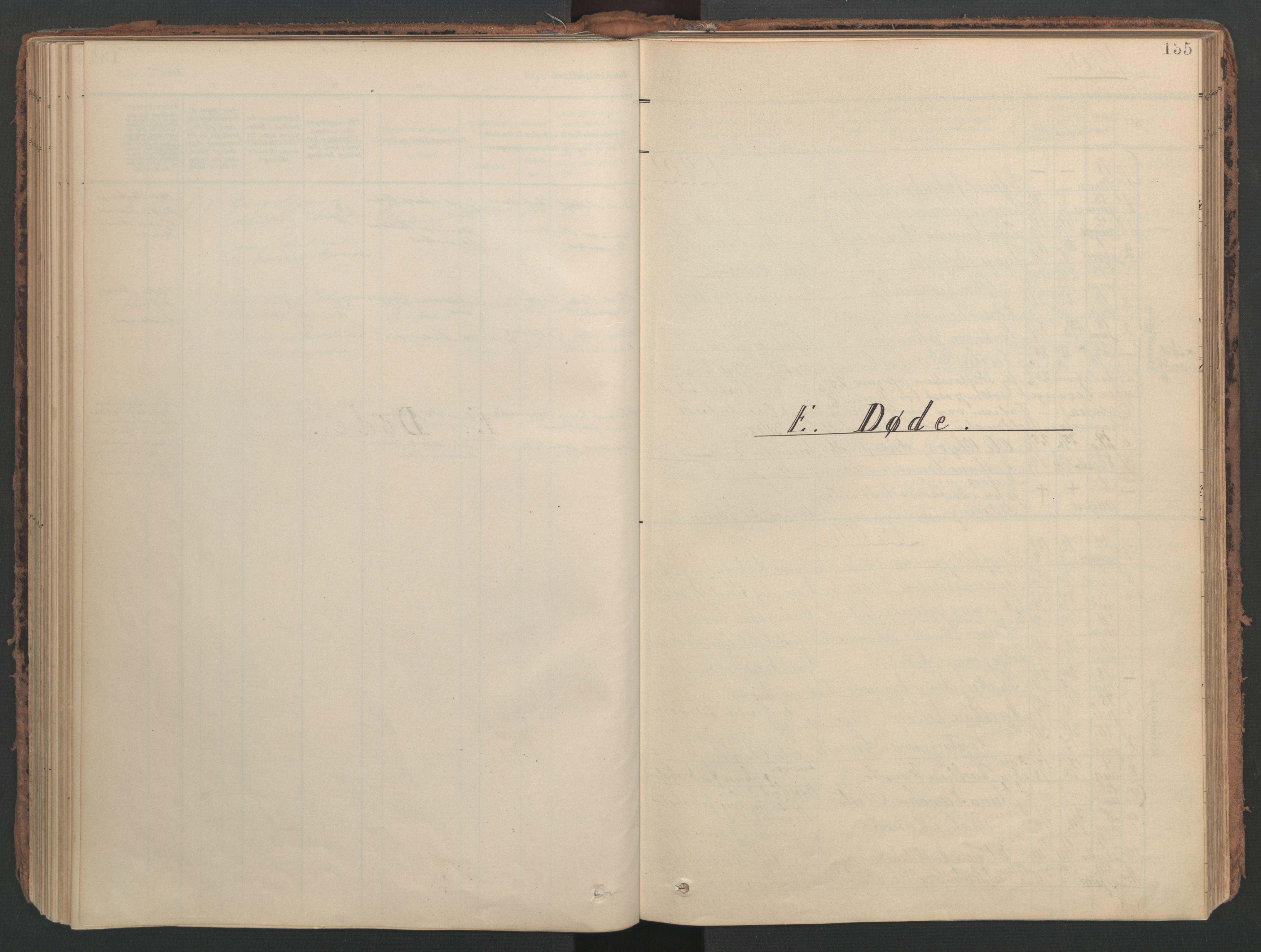 SAT, Ministerialprotokoller, klokkerbøker og fødselsregistre - Nord-Trøndelag, 741/L0397: Ministerialbok nr. 741A11, 1901-1911, s. 135