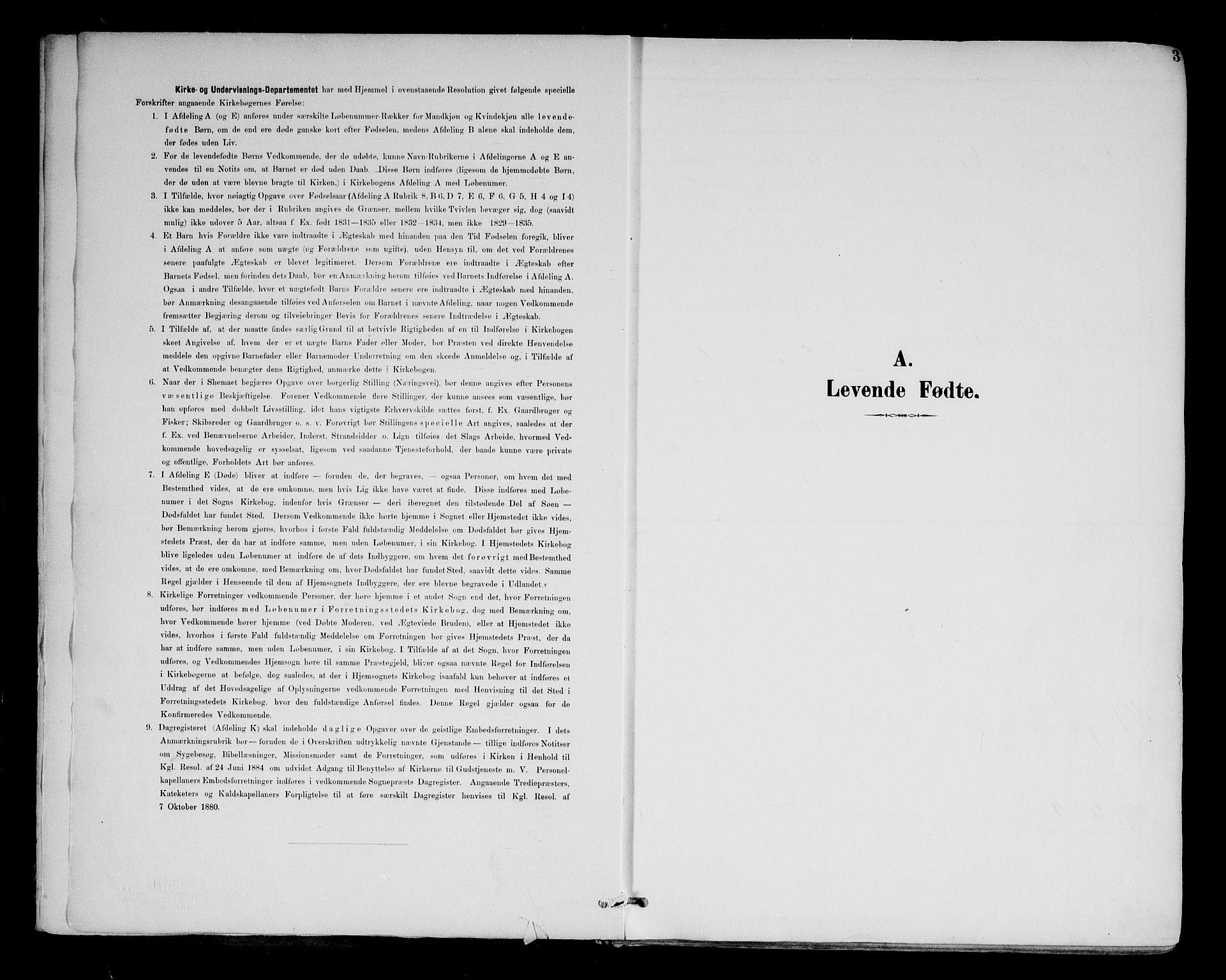 SAH, Brandval prestekontor, H/Ha/Haa/L0003: Ministerialbok nr. 3, 1894-1909, s. 3