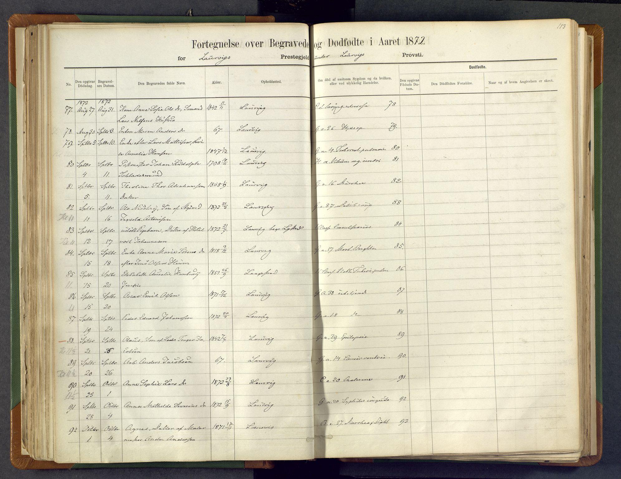 SAKO, Larvik kirkebøker, F/Fa/L0007: Ministerialbok nr. I 7, 1871-1883, s. 113