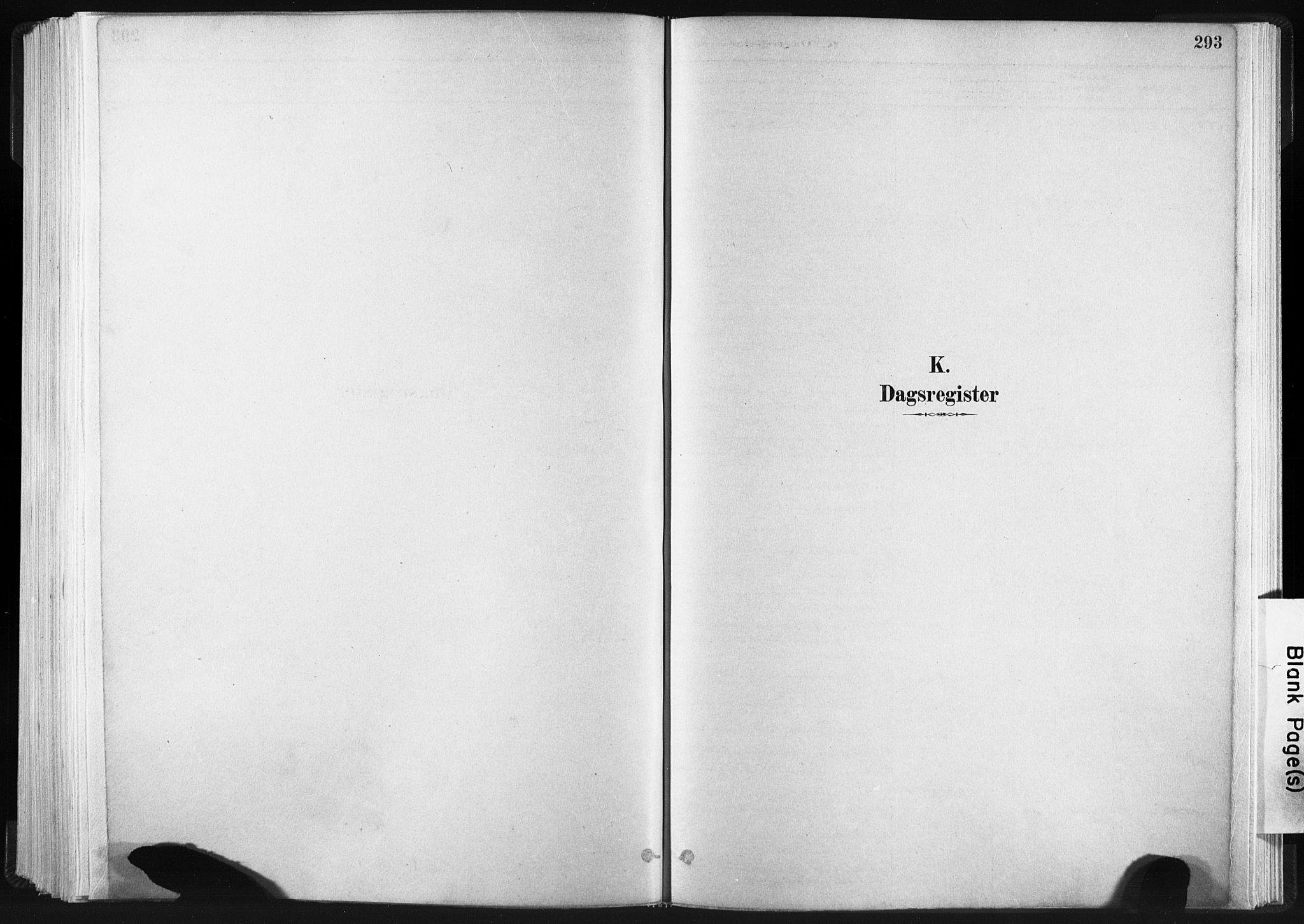 SAT, Ministerialprotokoller, klokkerbøker og fødselsregistre - Sør-Trøndelag, 665/L0773: Ministerialbok nr. 665A08, 1879-1905, s. 293