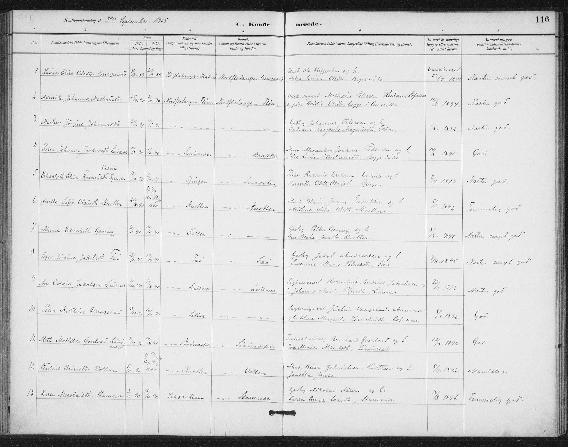 SAT, Ministerialprotokoller, klokkerbøker og fødselsregistre - Nord-Trøndelag, 772/L0603: Ministerialbok nr. 772A01, 1885-1912, s. 116