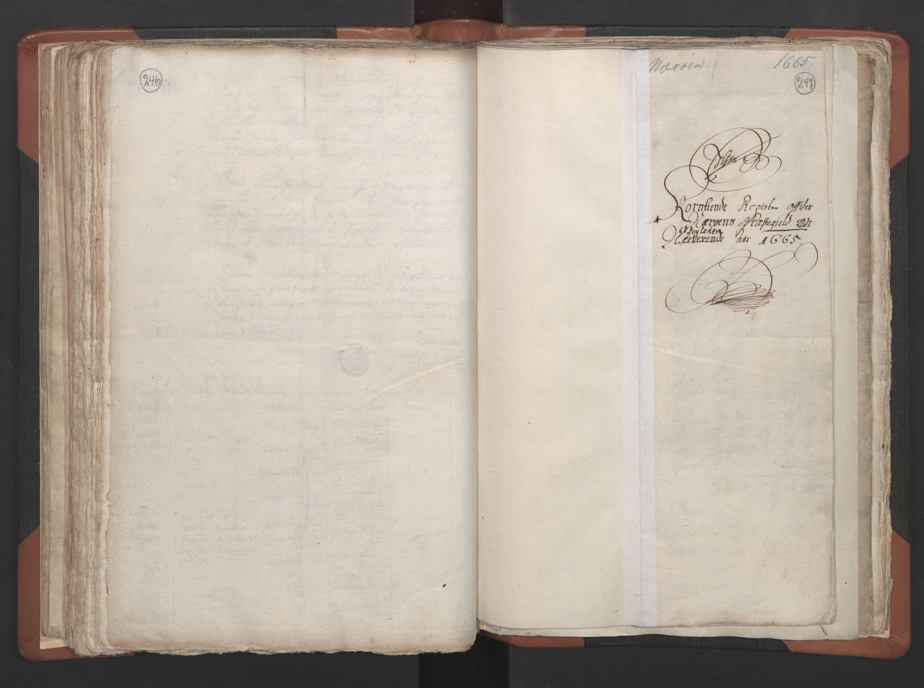 RA, Sogneprestenes manntall 1664-1666, nr. 34: Namdal prosti, 1664-1666, s. 246-247