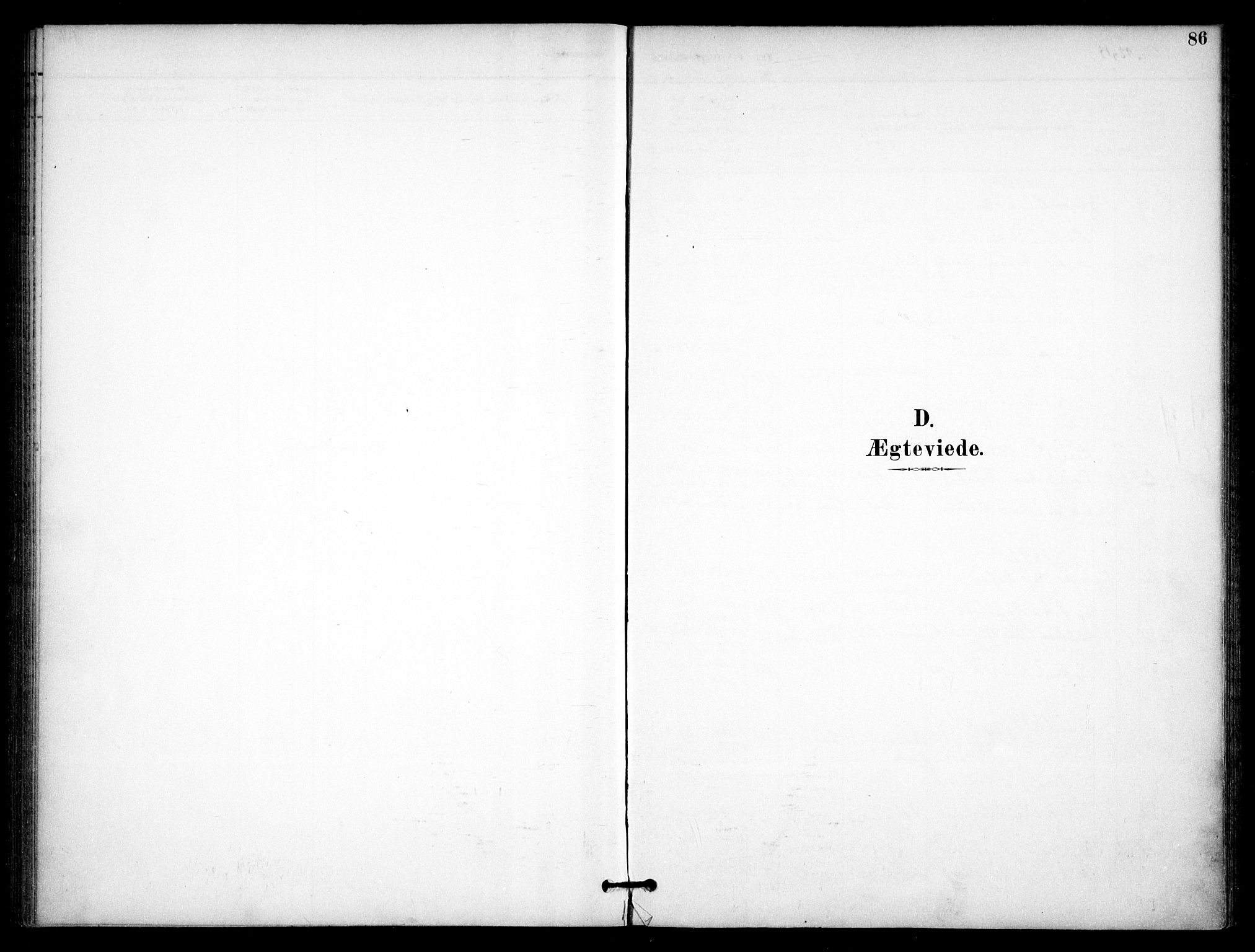 SAO, Nannestad prestekontor Kirkebøker, F/Fb/L0002: Ministerialbok nr. II 2, 1891-1909, s. 86