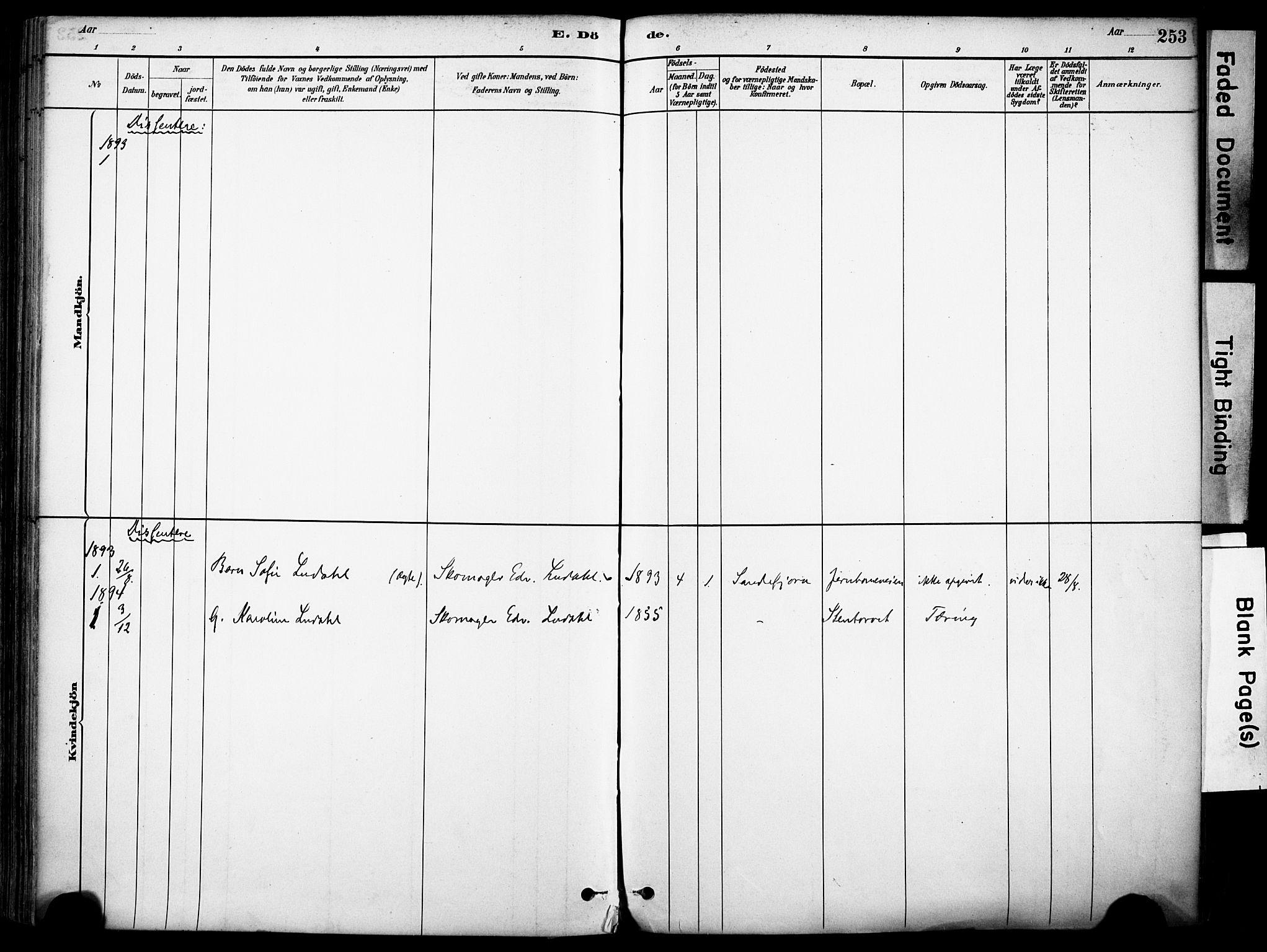 SAKO, Sandefjord kirkebøker, F/Fa/L0002: Ministerialbok nr. 2, 1880-1894, s. 253