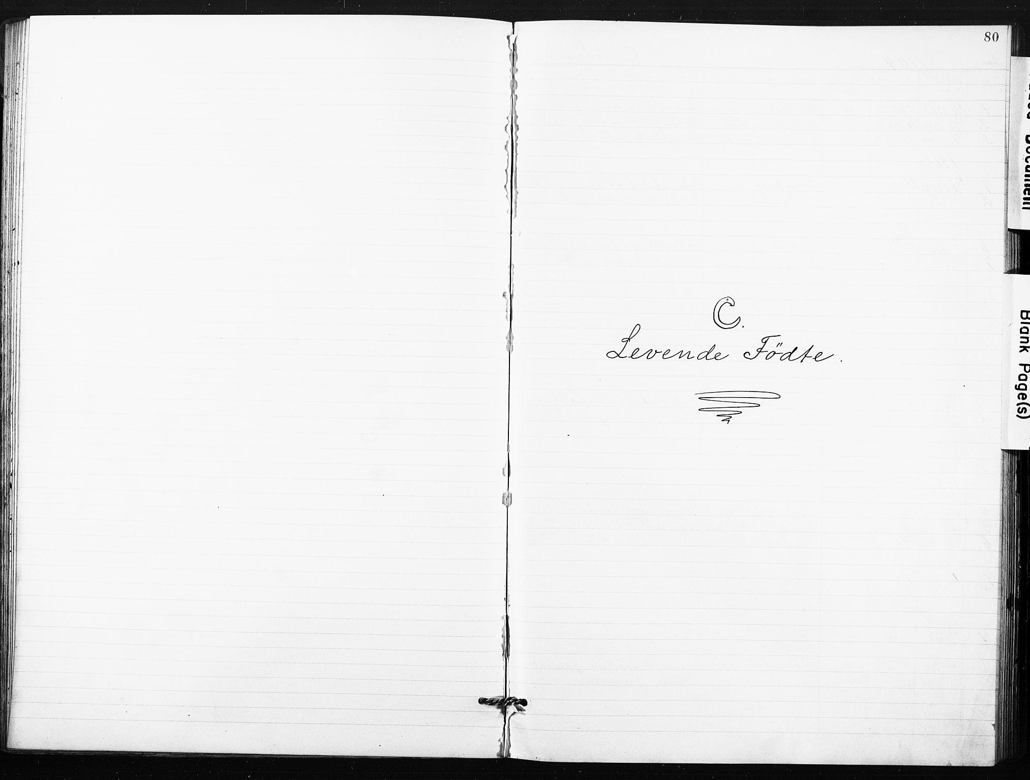 SAO, Kristi menighet Fredrikstad , A/L0002: Dissenterprotokoll nr. 2, 1904-1932, s. 80