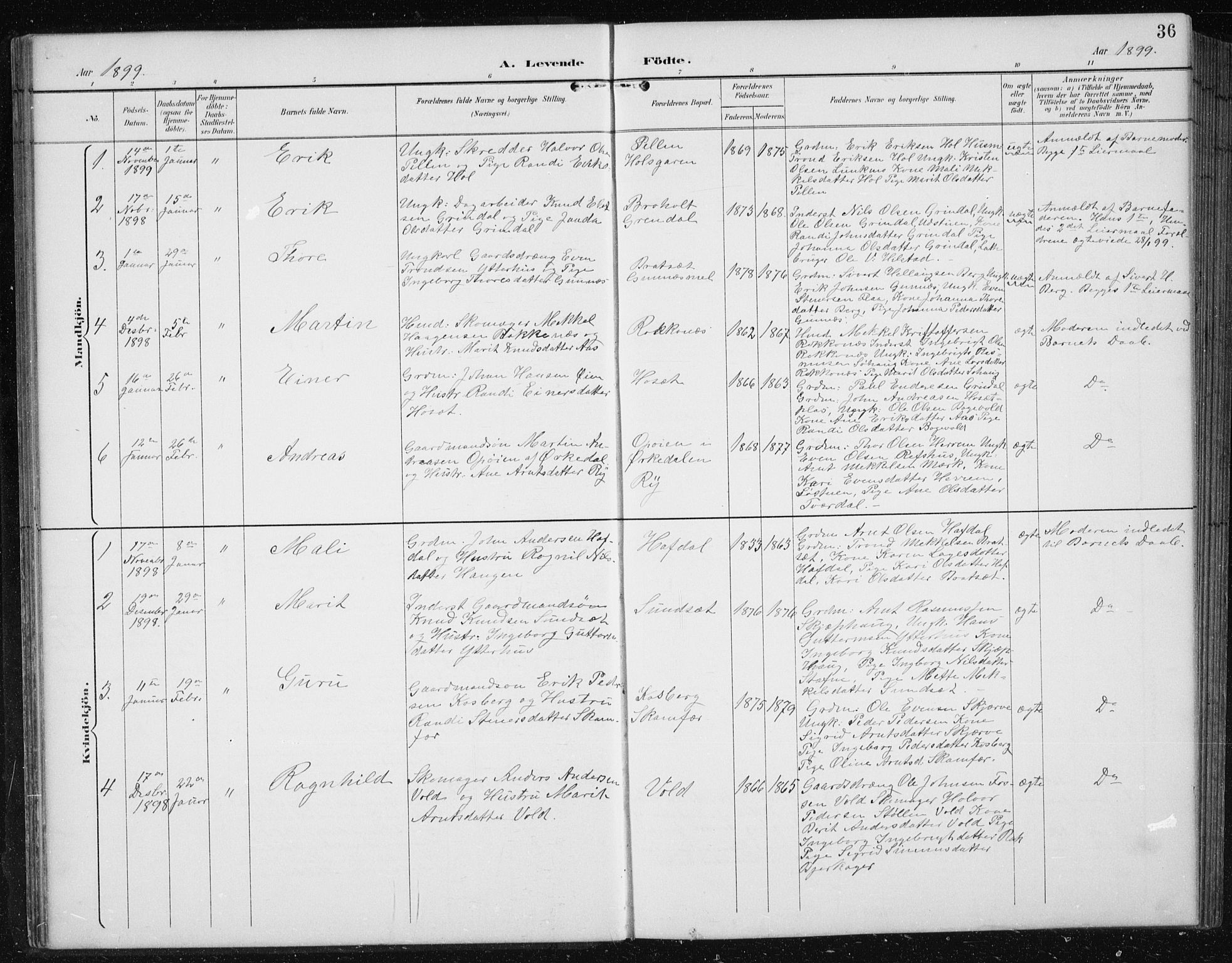 SAT, Ministerialprotokoller, klokkerbøker og fødselsregistre - Sør-Trøndelag, 674/L0876: Klokkerbok nr. 674C03, 1892-1912, s. 36