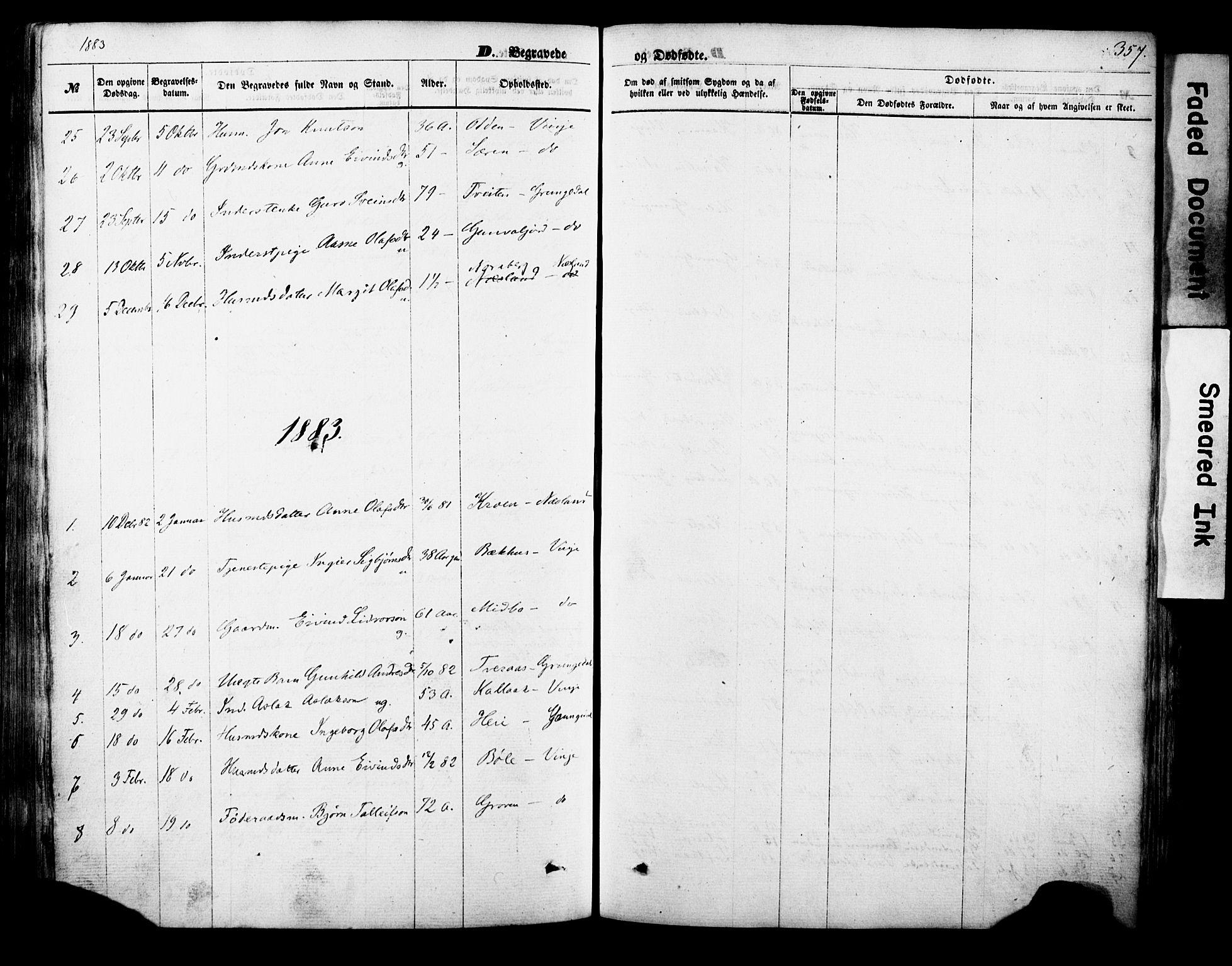 SAKO, Vinje kirkebøker, F/Fa/L0005: Ministerialbok nr. I 5, 1870-1886, s. 357