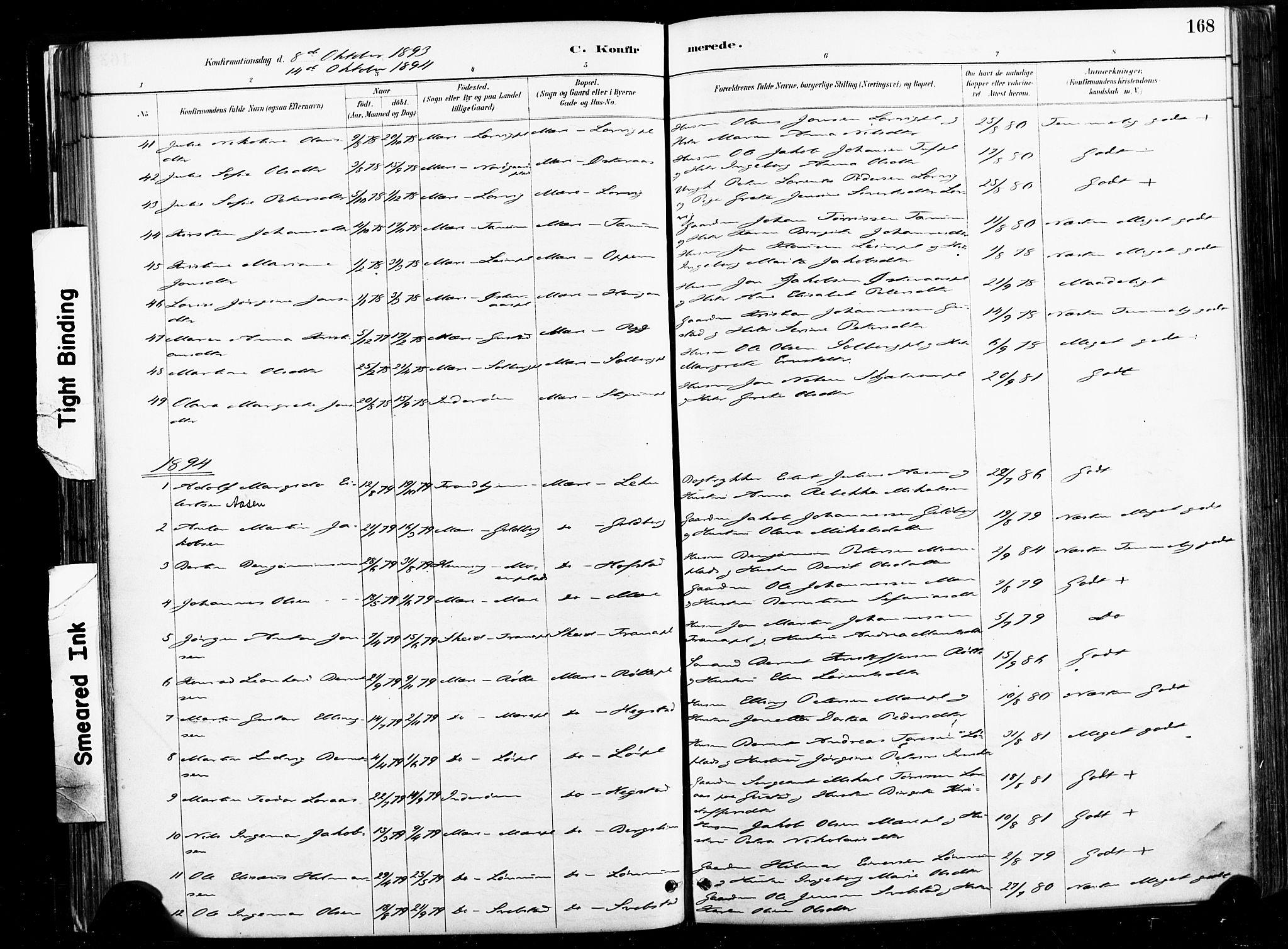 SAT, Ministerialprotokoller, klokkerbøker og fødselsregistre - Nord-Trøndelag, 735/L0351: Ministerialbok nr. 735A10, 1884-1908, s. 168
