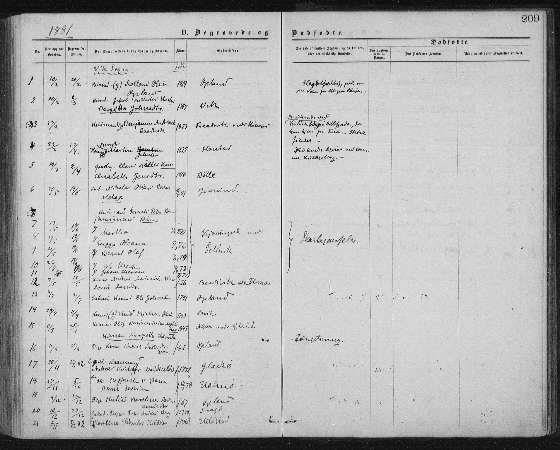 SAT, Ministerialprotokoller, klokkerbøker og fødselsregistre - Nord-Trøndelag, 771/L0596: Ministerialbok nr. 771A03, 1870-1884, s. 209