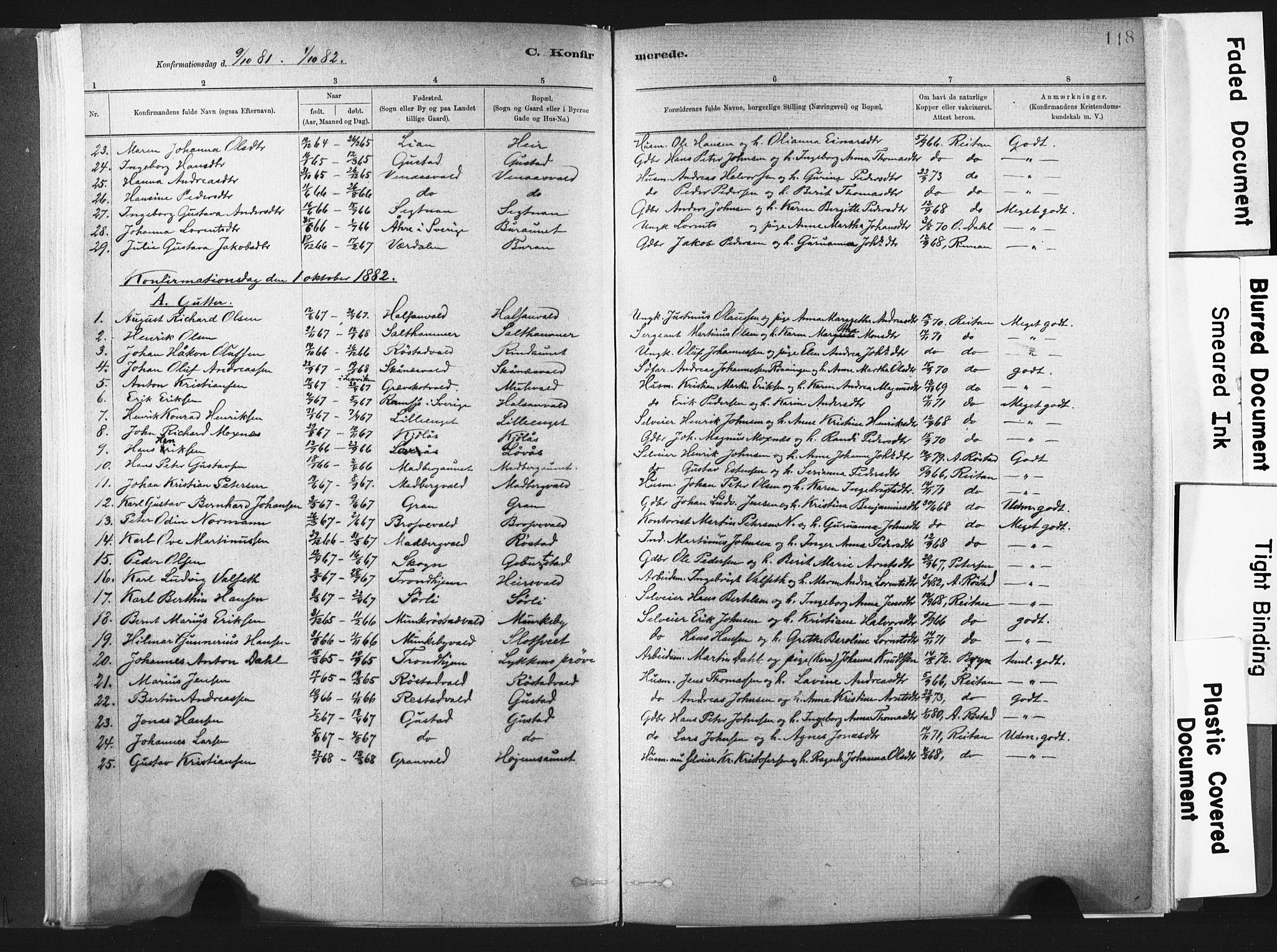 SAT, Ministerialprotokoller, klokkerbøker og fødselsregistre - Nord-Trøndelag, 721/L0207: Ministerialbok nr. 721A02, 1880-1911, s. 118